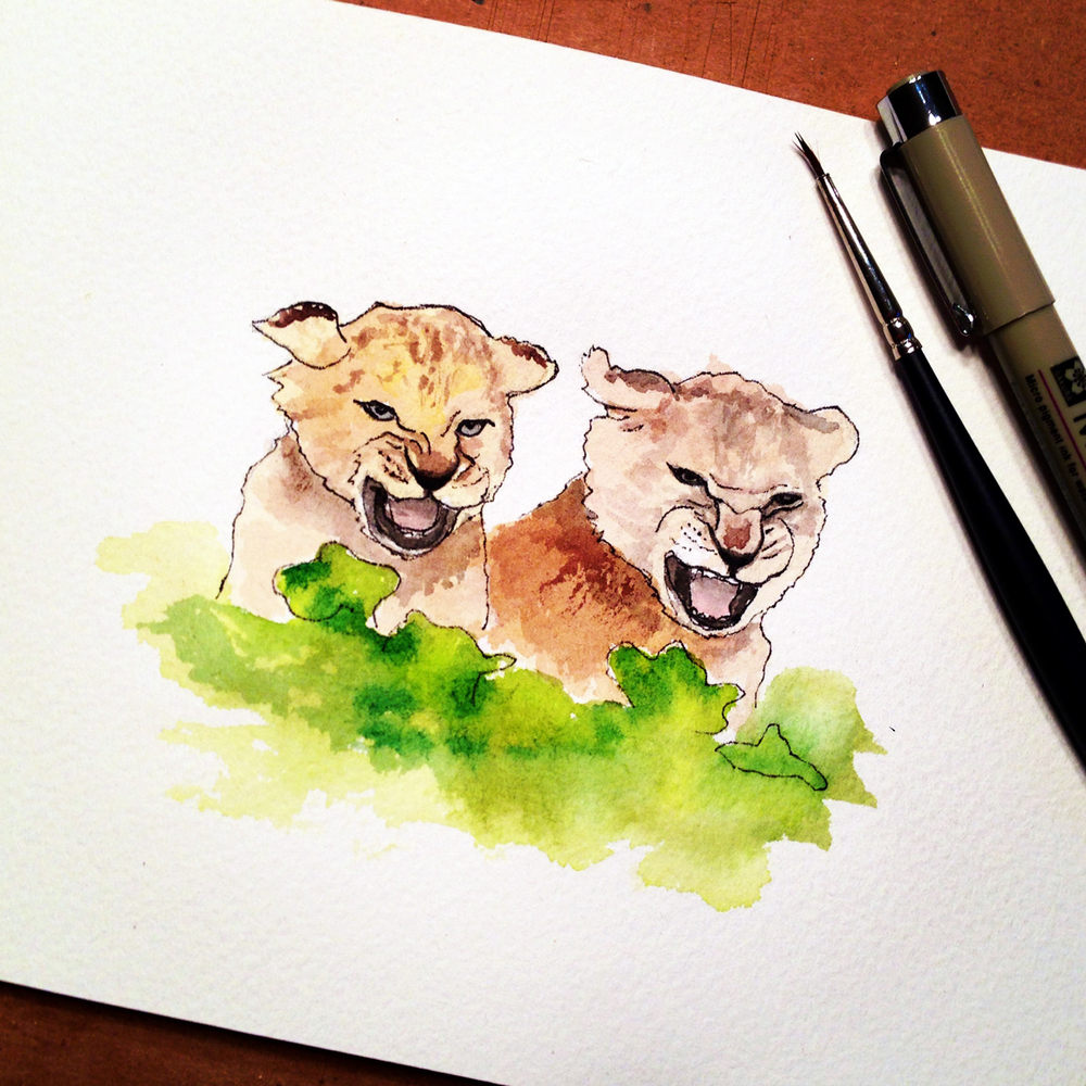 12-140319-lions.jpg