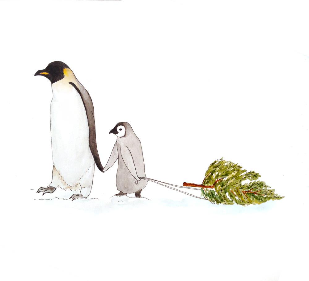 48-141203-penguin.jpg