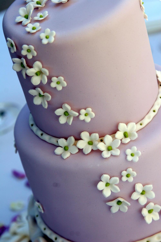 patisserie_angelica_fondant_lavender.jpg