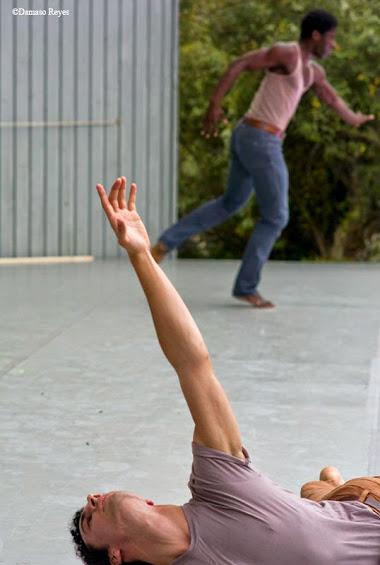 Cape Dance Festival 2014_278.jpg