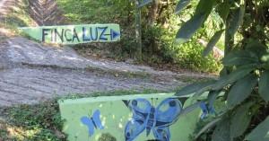 Finca-Luz-driveway-300x157.jpg