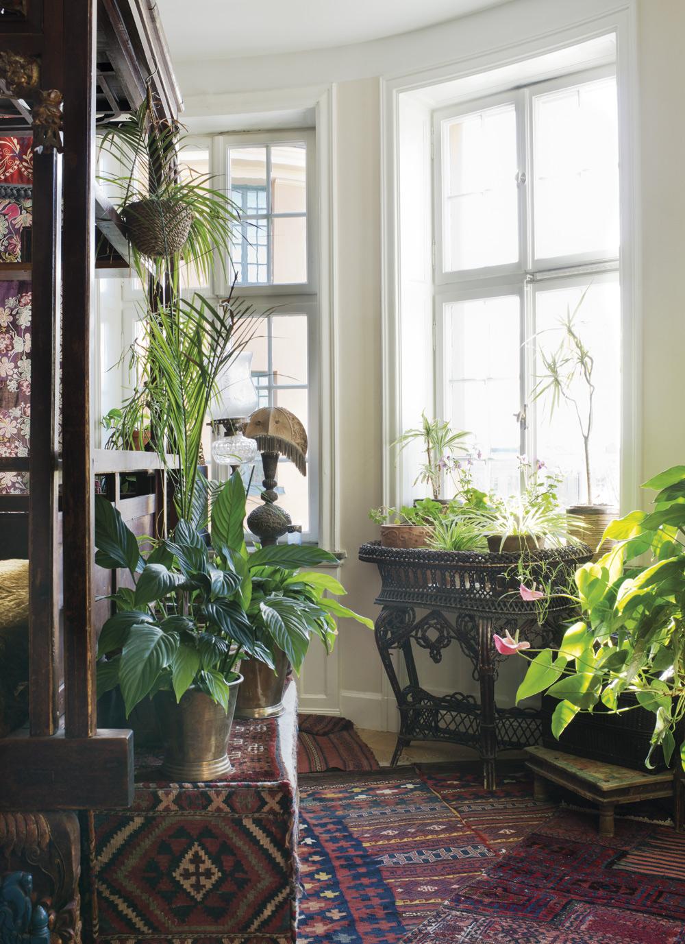 GRÖN OAS. I sovrummet finns många gröna växter. Blomsterbordet är från 1910-taletoch inropat på auktion.