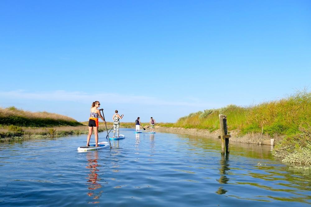 Stand up paddle dans les Marais de l'ile de ré