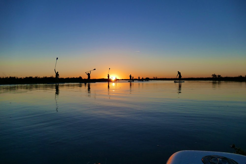Sunset SUP tour Ile de Ré