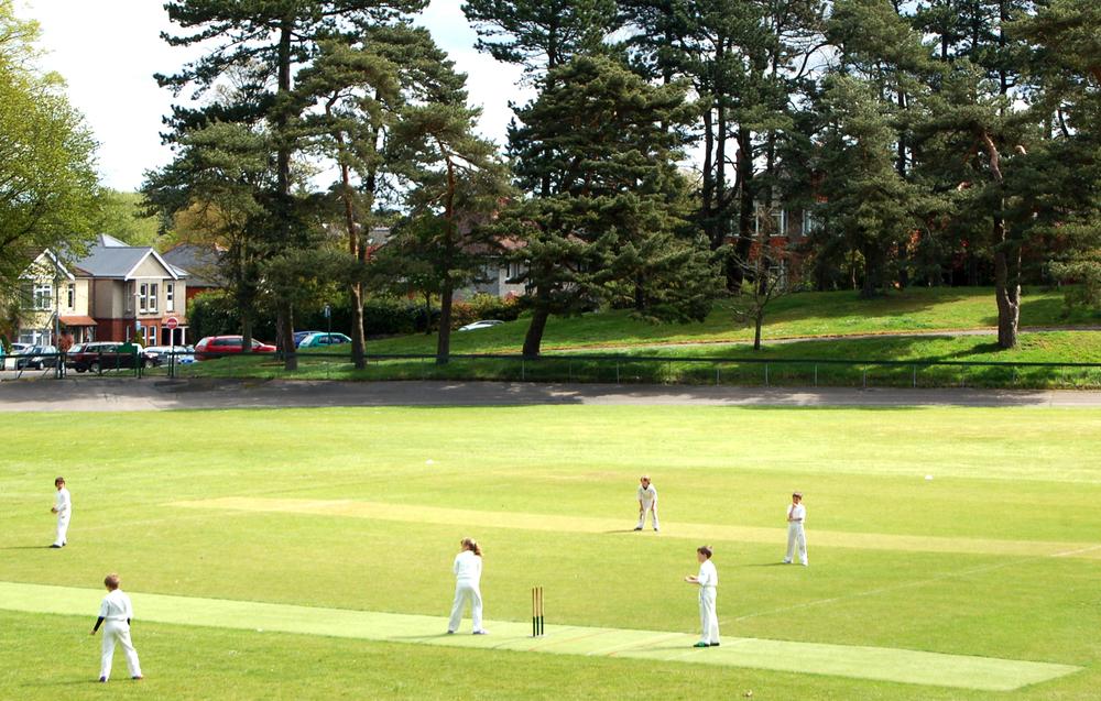 Cricket on Winton recreation ground