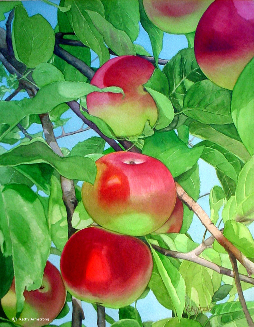 """Apple Orchard"""