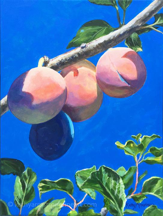 """Ripening Plums"""