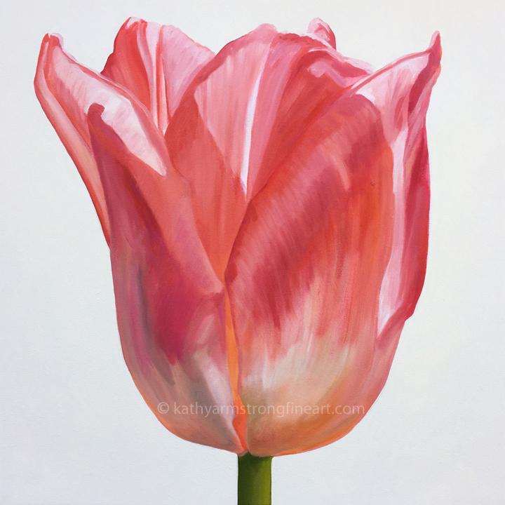"""""""Tulip Portrait #1"""""""