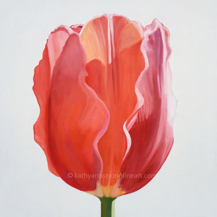 """""""Tulip Portrait #3"""""""