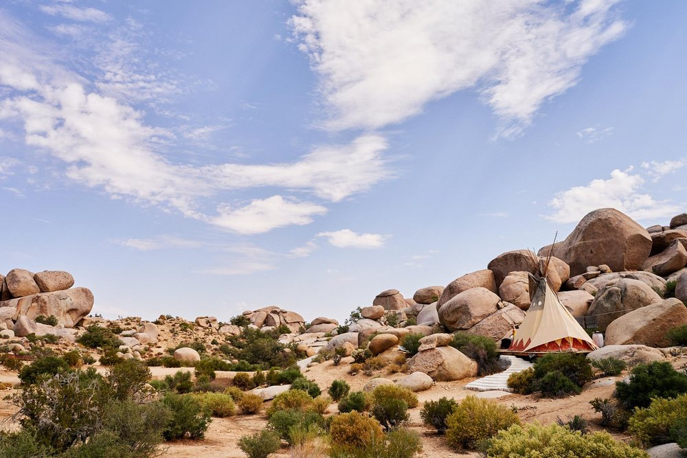 JoshuaTree_PhillipAngert - 31.jpg
