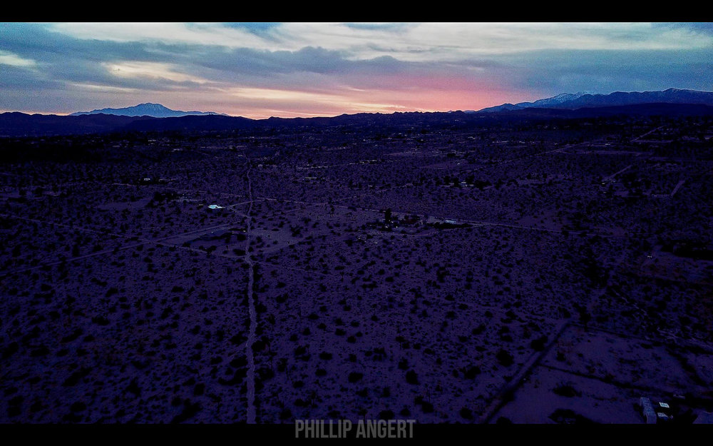 JoshuaTree20180116PhillipAngert - 8-watermarked.jpg