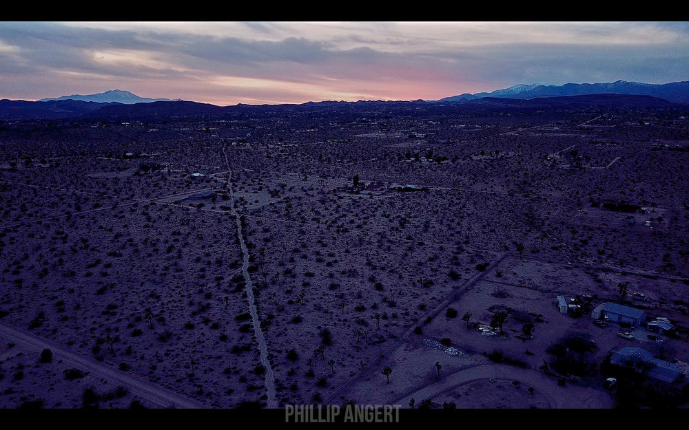 JoshuaTree20180116PhillipAngert - 15-watermarked.jpg