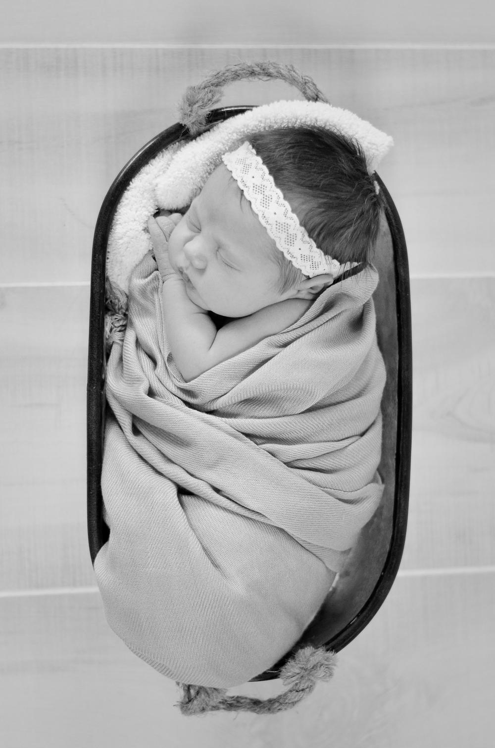 Elle Newborn-14.jpg