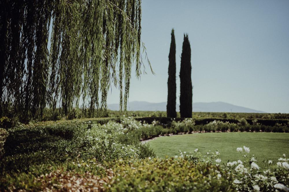 Temecula-Wedding-Ponte-Winery-5.jpg
