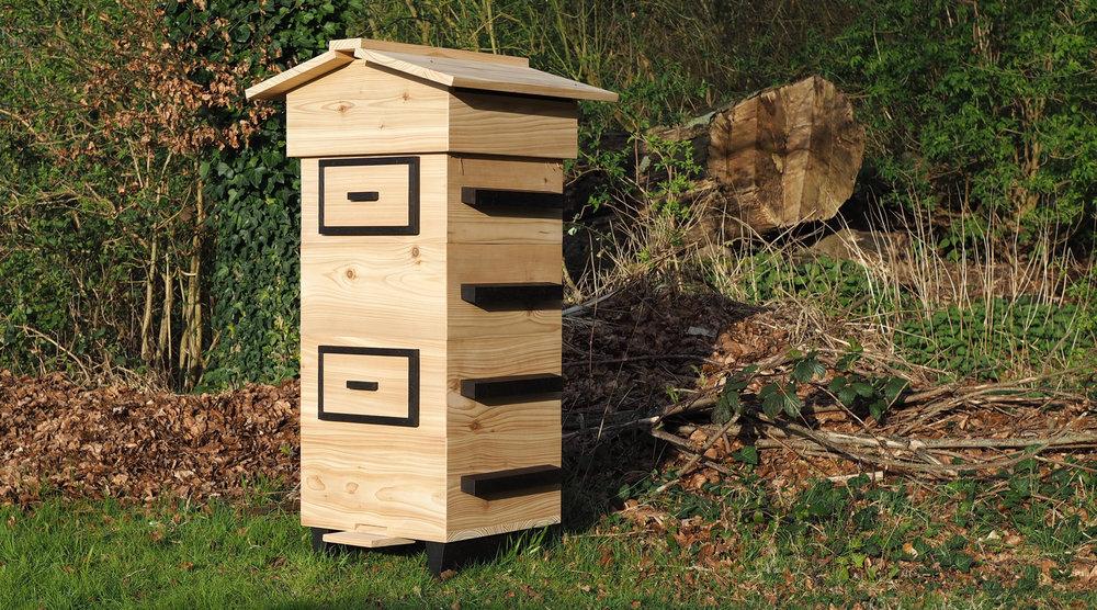 Beehive woodland cedar oak trees bees.jpg