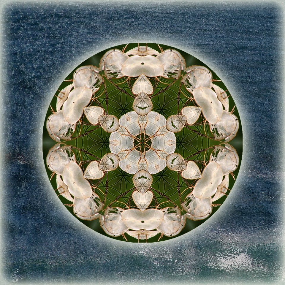 [Manifesting Abundance] Mandala Art by Alicia Kent, one of your gifts when you spend $150 or more