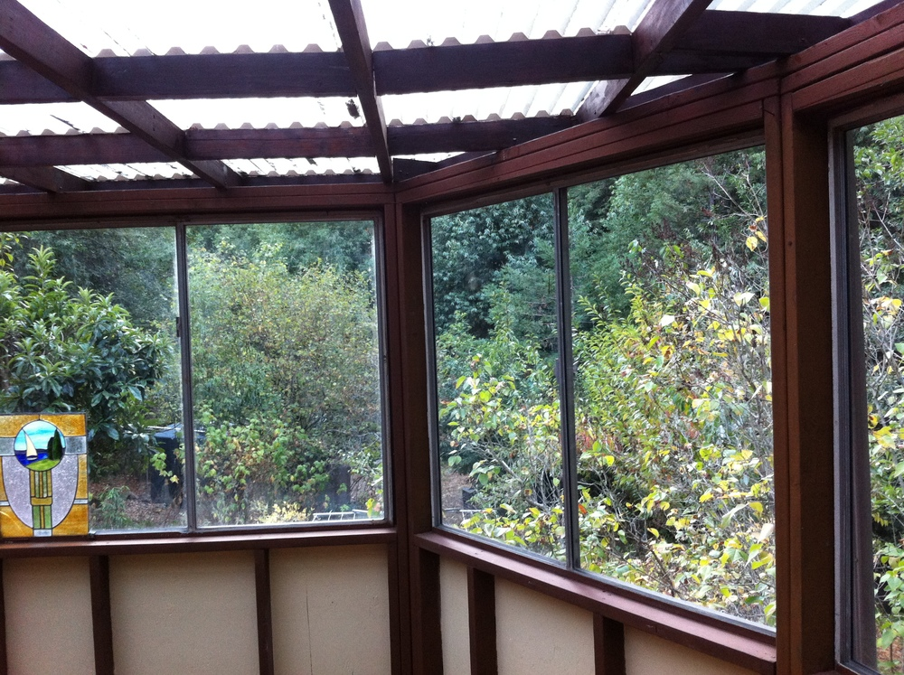 The lovely forest view from the sunroom