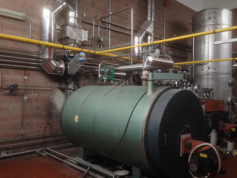 Generatore di vapore Boldrin