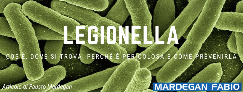 Legionella - Articolo Mardegan Fausto.png