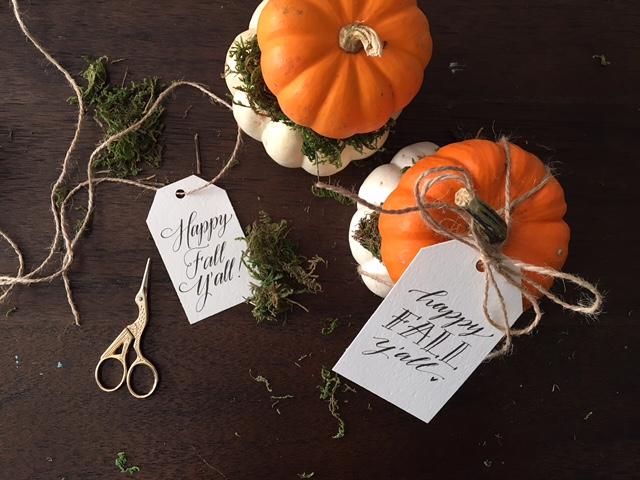 DIY pumpkin gift