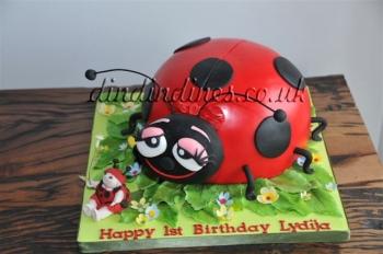 Ladybirdbirthdaycake.jpg