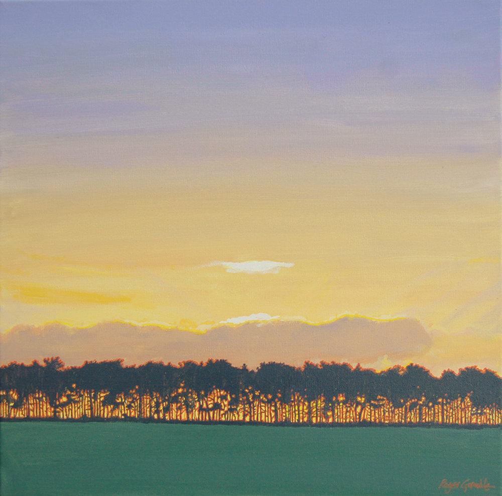 Dawn, Wretham 50x50cm.jpg