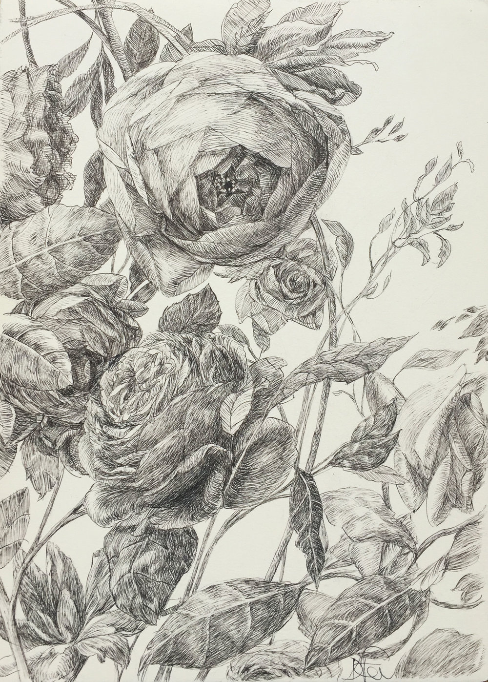 Still Life With Flowers In Black I