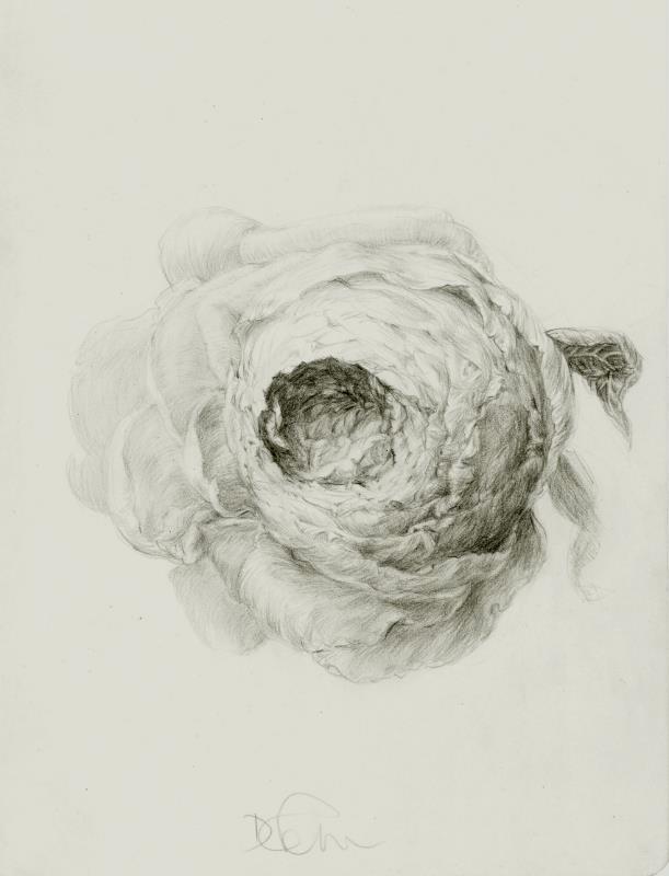 grayflower.jpg