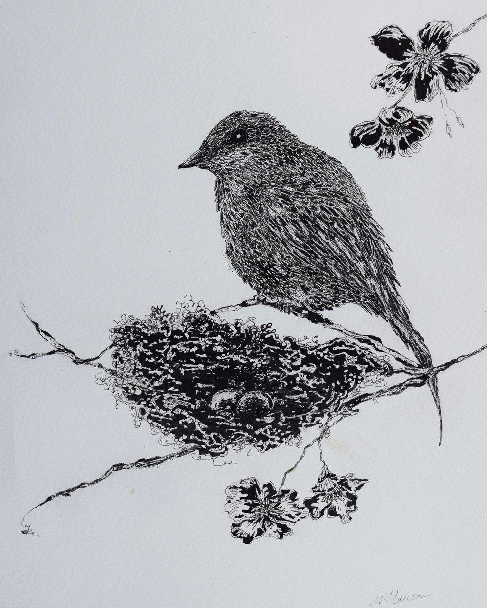 Bird-with-Nest.jpg