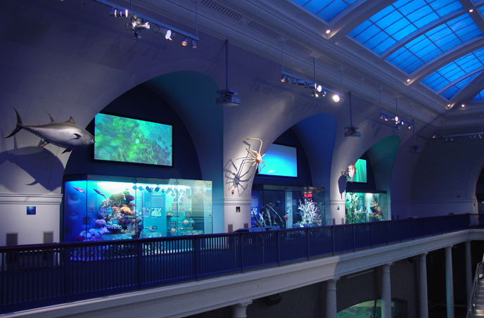 Oblivion Natural History Museum