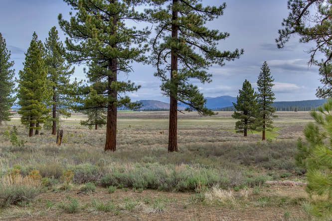 7445 Lahontan Dr Truckee CA-small-009-View from Back of Property-666x444-72dpi.jpg