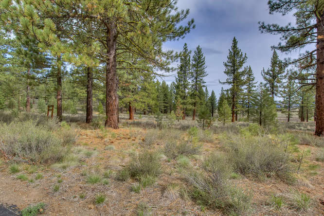 7445 Lahontan Dr Truckee CA-small-002-Front of Property-666x444-72dpi.jpg