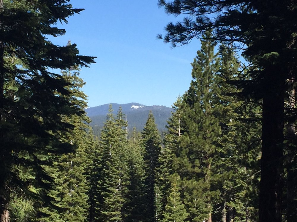 Northstar: 2760 Cross Cut Court – Homesite 11