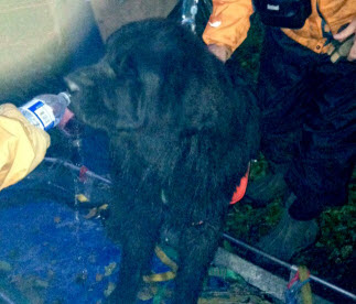 Moses being given water by a member of WASART moments after his rescue