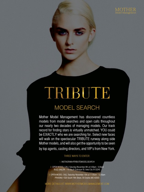 TRIBUTE_MODEL_SEARCH_2.jpg