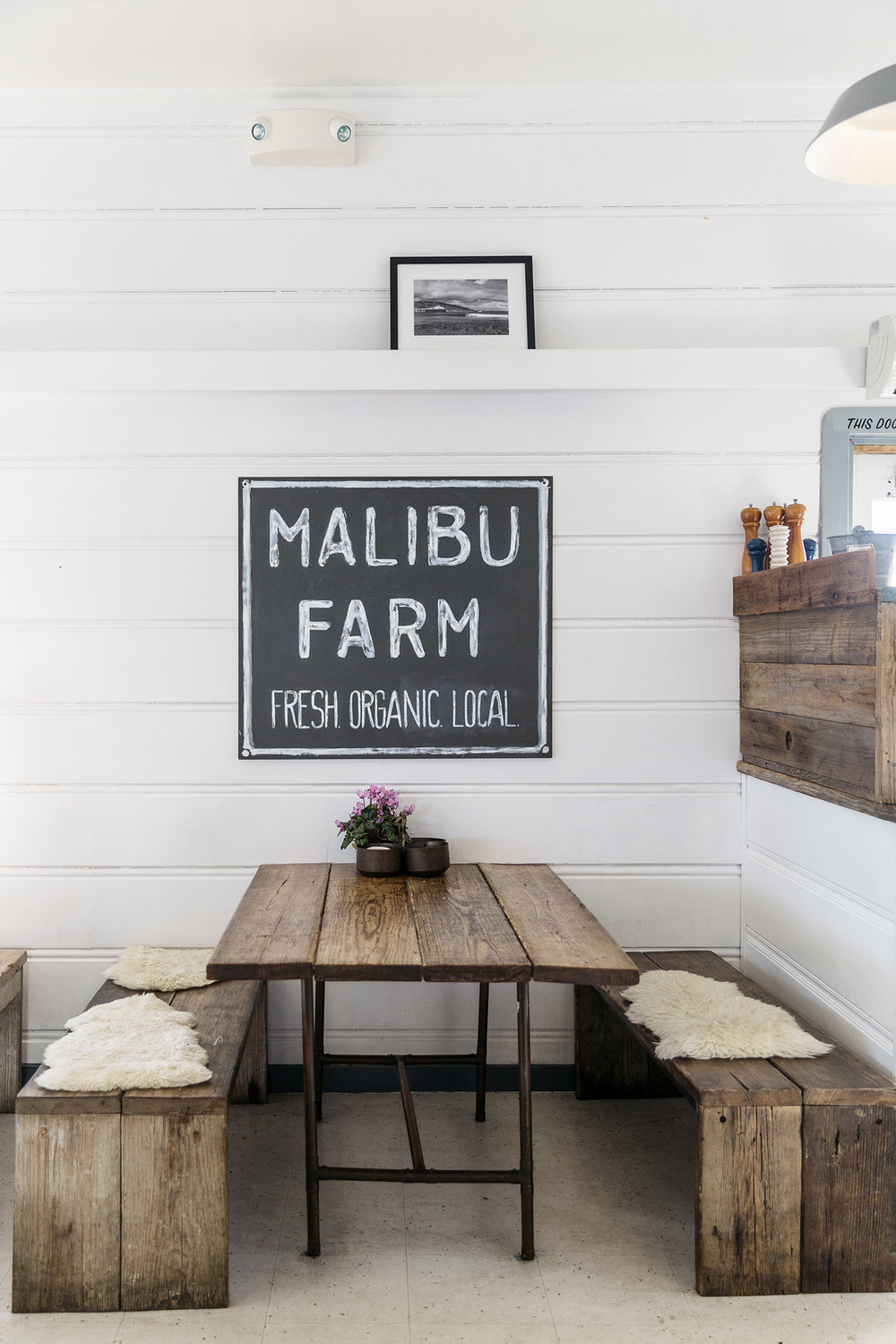 Malibu Farm, a restaurant out on the Malibu Pier by Rebecca Stumpf Colorado Denver Boulder Editorial and Commercial Food Travel and Lifestyle Photographer