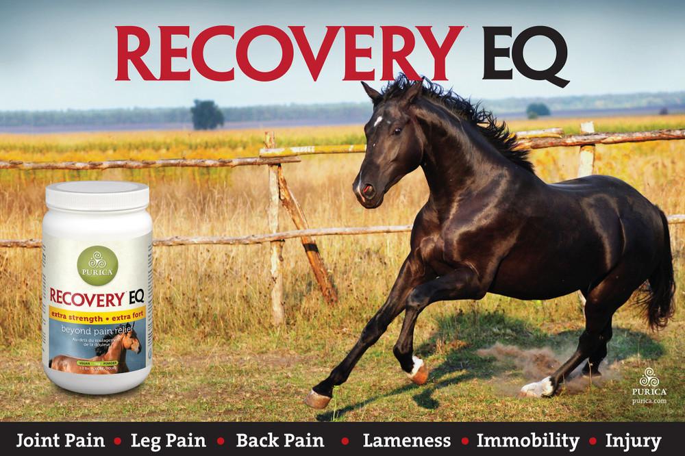 Recovery-EQ-Banner-6x4-72x48-1024x682.jpg