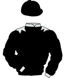 Khalid Khalifa.jpg