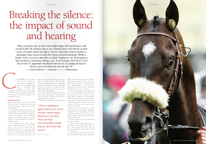 "CONSIDERING how important a horse's sense of hearing is and how commonly earplugs are used in various athletic events, there is remarkably little research in this field. Nonetheless, this article provides the most up- to-date information on the form and function of the equine ear and how hearing and sound impact performance. How horses hear Just like most other parts of the horse's body, the ear has been fine-tuned over the past several million years to help horses evade their natural predators. ""A horse's sense of hearing is exquisite,"" says Camie Heleski, PhD, Instructor/ Coordinator of the two-year Ag Tech Horse Management Program at Michigan State University's Department of Animal Science and a council member for the International Society for Equitation Science. This is because a horse's ear is a funnel- shaped structure designed to corral sound waves to the inner ear where they are perceived by the brain. The outer ear, called the pinna, has ten separate muscles that work in concert to rotate each ear up to 180°. As a result, a horse can effectively achieve 360° worth of hearing without having to move his head. In contrast, humans only have three muscles associated with each of our small, flat, essentially immobile pinnae, effectively limiting what and how much we hear. Additionally, unlike horses, our ears are not able to move independently. Not only can horses hear noises farther away than humans and perceive a larger variety of noises but horses also beat humans in the category of sound localisation. Heleski says, ""According to Paul McGreevy, author of the book Equine Behavior: A Guide for Veterinarians and Equine Scientists, horses are able to locate the source of a sound within an arc of approximately 25°, and horses can respond to sounds from up to 4,400 metres away, which is just over 21 furlongs."" Some other interesting facts about what horses hear that Heleski summarized from McGreevy's book is that horses have a much larger range of sound and can hear higher- pitched sounds than humans. Specifically, the sound range in humans is quite narrow, from a lowly 20 hertz (Hz) to a mere 20,000 Hz. In contrast, horses have a much larger range of sound: 55-33,500 Hz. What does this translate to? Lynne McCurdy, a doctor of audiology in Wellington County, Ontario, Canada, explains: ""250 Hz is the rumbly middle C on the piano, 20 Hz is a really low drum, and human speech sounds don't exceed 8,000 Hz."" This means that horses can hear sounds that we can't even fathom. ""There is nothing in speech that occurs in the extreme sound ranges that horses can hear,"" notes McCurdy. She adds, ""They can hear 'environmental' sounds that we don't hear, like insects."" Once the sound waves reach the pinnae, they are funneled through the ear canal to the eardrum, middle ear, and then inner ear. When sound waves ""strike"" the eardrum, the thin membrane vibrates, amplifying/ intensifying the sounds waves that subsequently causes the three small bones (malleus, inca, and stapes) in the middle ear and the structures in the inner ear to vibrate. Ultimately, those vibrations are metamorphosed into electric signals that stimulate the auditory (""hearing"") nerve that helps the brain interpret the electrical signals as sound...all in the blink of an eye. Speed of sound: does noise impact behaviour and performance? Does what a horse hear on the track impact their racing performance? For most horses, absolutely. According to equine behaviourist Robert M. Miller, DVM, no horse/trainer pair can reach its full potential unless the trainer understands ten specific traits that every horse inherits. Those traits include (but are not limited to) their inbred nature for flight; their perceptio  and preparedness to flee; their uber quick time between their perception of danger and their physical response; a rapid desensitisation to frightening stimuli compared to other species; and their ability to learn and remember. Hearing and sound perception are therefore important for trainers to consider, but given that horses have been evolving for about 45 million years yet domesticated for only about 5,000 years, it is no wonder that we haven't been able to ""temper"" some of those natural behaviours/senses, such as responding to sound and attempting to flee. One method that has helped performance horses ""fight"" their natural instincts and concentrate on the task at hand is the use of earplugs. Shutting out the noise Why use earplugs in thoroughbreds? According to Kim Kelly, Hong Kong Jockey Club's Chief Stipendiary Steward, ""...the use of earplugs in races conducted by the [Hong Kong Jockey] Club is aimed at allowing for the attenuation or dampening of some of the auditory stimuli for nervous/flighty horses so as to enable them to focus during the race, whilst not completely blocking out all environmental noise/stimuli. Given the large, often vocal crowds which attend racing in this jurisdiction, the use of earplugs can result in otherwise flighty horses remaining calm, which may have a positive effect on their racing performance."" Earplugs are far more common in standardbred racehorses, but according to Greg Maltby from Maltby Stables in Ontario, Canada, and a member of the Industry Code Committee for Equine Welfare Code in Canada, earplugs play an important role in thoroughbreds as well. ""Earplugs help eliminate noises in the starting gate, especially the echoes that seem to drive the horses nuts,"" explains Maltby. ""In horseracing, we can't wait 1.5 years to make sure the horse is used to all the sounds on the track, so earplugs help with a horse's flight response, to deaden it a bit. They make the horse more useful and make their experience better."" Earplug ethics? Earplugs are apparently fairly innocuous but are not permitted by certain equine associations. For example, Equine Canada states that ""Horses must be shown without artificial appliances."" The British Horseracing Authority does permit earplugs; however, they stipulate: ""When any horse runs in a race with earplugs of any type, such plugs must not be removed during the course of the race."" Similarly, the Hong Kong Jockey Clubs states, ""Only earplugs of a design approved by the Stewards and the Veterinary Officer shall be permitted to be used on horses in races. When a horse is declared to race with earplugs, such earplugs must not be removed during the course of the race and must remain in place until after the horse has been unsaddled following the race. Earplugs shall not be used by horses wearing a hood."" Why such stringent rules regarding a simple plug of cotton (or foam or sponge)? ""One reason is that certain horses, such as dressage horses, are judged on behaviour issues in addition to performance. In thoroughbreds, it simply boils down to whoever crosses the finish line first,"" suggests Rick Arthur, DVM, Equine Medical Director of the California Horseracing Board. Kelly takes another stance and adds, ""If a horse were to be permitted to wear a hood in conjunction with earplugs, this may result in an almost complete removal of auditory senses."" ""Although there are bigger fish to fry when it comes to ethical issues in the horse industry, earplugs do effectively strip away one of a horse's most important senses,"" says Heleski. Other reasons for the different rules created by different organisations are not overt, which of course begs the question, do earplugs even work? ""Barry Abrams [a multiple graded stakes winning trainer whose horses have earned over $27 million to date] claimed a difficult filly one year but as soon as he put the earplugs in she turned into a stakes winner,"" recalls Arthur. Of course not all horses will turn around and become stakes winners, but Heleski notes, ""There is lots of anecdotal evidence that they [earplugs] do work based on the few blogs and forums."" Even if earplugs played only a small role in Zenyatta's career, her success story certainly suggests that they are worth trying. The final note Thoroughbred trainers don't necessarily want to ""calm their savage beasts"" either in the gate or during the race, but the available data on hearing and earplugs suggests that what horses hear can impact their health, performance, and quality of life, even when we either aren't paying attention or are unable to sense what our horses do.  Musician Ray Charles once said, ""I was born with music inside me. Music was one of my parts. Like my ribs, my kidneys, my liver, my heart. Like my blood. It was a force already within me when I arrived on the scene. It was a necessity for me, like food or water."" Thoroughbreds also have the music inside of them, but two studies suggest that some sounds, such as music, can have a negative impact on horses. The first study, ""Risk Factors for Gastric Ulceration in Thoroughbred Racehorses"" (available at https://rirdc.infoservices.com.au/ downloads/08-061) reported that playing a radio in the barn increased the risk of gastric ulcers. In that study, the author, Associate Professor Guy D. Lester from the School of Veterinary and Biomedical Sciences, Murdoch University in Western Australia, collected data from 402 racehorses under the care of 37 different trainers. Those horses were sedated and scoped to assess the stomach for ulcer disease and data were collected from each trainer and horse to try to identify risk factors for gastric ulceration. Lester wrote, ""There were a large number of factors that significantly impacted on ulcer disease when examined... There were a number of environmental factors that were also significantly associated with gastric ulceration... Playing of a radio within the barn increased risk [of gastric ulceration]."" He concluded, ""These results indicate that both physiological and psychological stress may be important determinants of ulcer disease in this population."" The study author did note, however, that ""Ulcer disease is clearly a multi-factorial problem. The results of this study provide trainers, owners, and veterinarians with important information regarding the prevalence and likely clinical signs of ulcer disease."" Thus, reducing environmental stress, including excessive noise, would likely be beneficial to thoroughbreds. Not all music has a detrimental impact on thoroughbreds, reports the second study (available at http:// www.thehorse.com/articles/31229/ music- genres-effect-on-horse-behavior-evaluated). According to the study authors, ""The behaviours that horses showed while listening to classical (Beethoven) and country music (Hank Williams Jr.) suggested that the music had an enriching effect on the environment of the stabled horse. ""Neither jazz (New Stories) nor rock music (Green Day) had the same, soothing effect. In fact, jazz and rock caused horses to show frequent, stressful behaviours – stamping, head tossing, snorting, and vocalising (whinnying) – more frequently than when no music was being played. Interestingly, none of the thoroughbreds included in the study displayed those stressful behaviours when either classical or country music was played or when there was no music. Although the horses continued to eat when listening to jazz or rock, the horses were 'snatching at food in short bursts.'"" Although it seems that Green Day won't be ""Hitchin' a Ride"" anytime soon, Heleski points out that those study results must be interpreted with caution and says, ""The higher rate of ulcers was associated with radio playing but not necessarily caused by radio playing. The study points out that stables that played the radio were far less likely to turn horses out or let them have direct contact with other horses (either of which might have been the far more important factor)."" Relative to the second study, Heleski explains that only eight thoroughbred geldings were included and ""we are not told what background exposure they have to different types of music, and they were only observed during a 30-minute exposure to each type of music."""