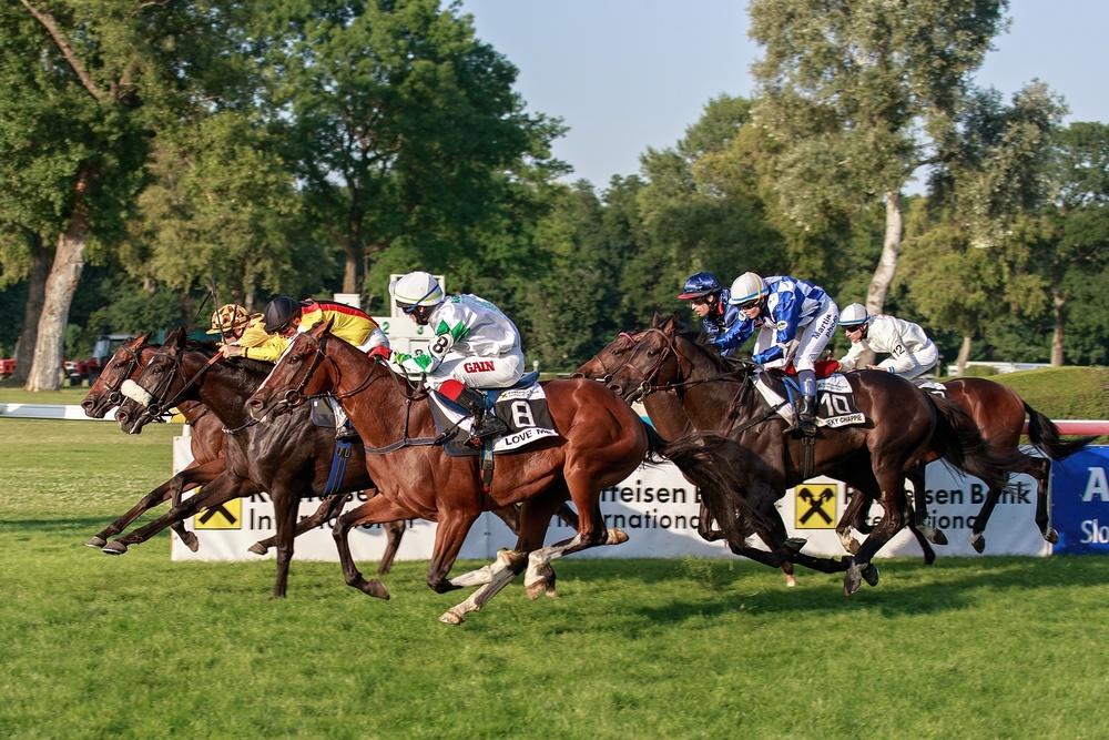 Bratislave_races.jpg
