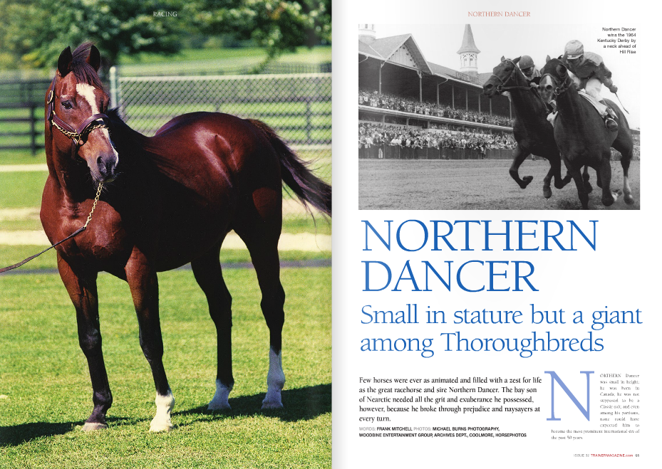 "ORTHERN Dancer was small in height; he was born in Canada; he was not supposed to be a Classic colt; and even among his partisans, none could have expected him to become the most prominent international sire of N the past 50 years. Born of well-bred but hardly fashionable parents, Northern Dancer started life and his public career as a wee yearling that nobody would buy when left unsold at $25,000 in breeder E.P. Taylor's yearling sale of stock with announced reserves. A couple of things dimmed the colt's appeal to buyers. First, he lacked height, though neither balance nor quality. To compound his shortcoming, the colt's sire was a young stallion known better for speed than stamina, and the yearling was the first foal out of a mare who had not won a stakes and kept it. Natalma had finished first in the Spinaway Stakes at Saratoga, which was quite an endorsement of her speed, but she was E.P. Taylor (left) with wife Winnie and jockey Bill Hartack after Northern Dancer cruised to an emphatic victory in the Queen's Plate (below) disqualified from victory. Then, in preparation for the Kentucky Oaks the following spring, Natalma chipped a knee, was retired, bred late to Taylor's stallion Nearctic, and then foaled Northern Dancer on May 27, 1961. So the greatest stallion of the late 20th century owed his existence, in the words of Tony Morris, to ""an accident, a whim of nature, and a mating dictated by expediency."" Northern Dancer went into Taylor's racing stable with trainer Horatio Luro, and what a stroke of luck that was. As a two-year-old, Northern Dancer established himself as a very good racehorse, with seven victories in nine starts. The last five of his victories came in succession, and the powerful bay colt's most notable success was the Remsen Stakes at Aqueduct on November 27, 1963. The Remsen and a mile allowance nine days earlier in which the colt had defeated Futurity Stakes winner Bupers were Northern Dancer's only starts outside Canada as a juvenile. But both the colt's improvement as his racing season progressed and his favorable impression going the mile of the Remsen made Northern Dancer a prospect for the Classics of 1964. There again, Northern Dancer had to prove himself. The speed of his sire and dam dominated many observers' estimation of Northern Dancer's chances in the Classics. Nearctic, a son of the great sire Nearco and the Hyperion mare Lady Angela, had useful form but showed his best over shorter distances. Northern Dancer's dam, Natalma, was by the once-beaten champion Native Dancer and out of the great producer Almahmoud. Her best demonstrated form came at two over sprint distances, but she might well have done better at three had she had the opportunity. Northern Dancer lost his three-year-old debut, a six-furlong allowance at Hialeah, then won a special exhibition before his first test in the March 3 Flamingo Stakes at Hialeah. The bounding bay won the Flamingo and his remaining preps for the Kentucky Derby. And after winning his last five races, plus ten of his last 11 starts, one might expect that Northern Dancer would be favored for the Kentucky DerbyNot so. Instead, Northern Dancer had to overcome the prejudice that a ""good big horse will beat a good little horse most of the time."" The good big horse was a towering son of Hillary named Hill Rise, and after successes in California, he was made favorite in the Kentucky Derby, with Northern Dancer sent off at 34-10. In the Classic, Northern Dancer stayed within hailing distance of the pacesetters, took the lead by the mile post, and when Hill Rise came to Northern Dancer in the stretch, he wouldn't let the bigger horse get by him, winning by a neck. David had slain Goliath, and then Northern Dancer repeated the process two weeks later in the Preakness, this time stretching his dominance to two-and-a-quarter lengths. Favored for the first time in the Belmont Stakes, Northern Dancer finished a tired third, but bounced back to win the Canadian Classic Queen's Plate two weeks later. However, in a workout afterward, the colt bowed a tendon and was retired. The winner of three Classics from four attempts at three, Northern Dancer was named the champion of his age in the U.S., as well as in Canada, where he was Horse of the Year in 1964. The career at stud Sent to stud at what was then called National Stud in Canada, Northern Dancer had much greater odds to overcome as a sire than as a racehorse. Becoming a really good sire is an excellent outcome that falls to no more than one horse of high promise in ten that retire to the stud. But Northern Dancer was a much better sire than Nearctic. Instead of being a good sire, Northern Dancer became a breed shaping stallion of international influence. To accomplish this, Northern Dancer had to get horses of the highest class and had to sire plenty of them. So he did. From only 21 foals in his first crop, Northern Dancer got nine stakes winners, including Viceregal, who was voted Canada's Horse of the Year as a two-year-old. Then Taylor sent both Northern Dancer and Nearctic to the newly developed Maryland property named Windfields Farm, and from Northern Dancer's second crop of racers came Nijinsky II, who remains the only English Triple Crown winner since Bahram in 1935. Nijinsky and other good performers made Northern Dancer the leading sire in England and Ireland in 1970, and he led the North American sire list in 1971. The best of Northern Dancer's American racers was probably either Fanfreluche (Alabama Stakes) or White Star Line (Alabama, Kentucky Oaks), although Dance Number, Northernette, and Lauries Dancer were also Grade 1 winners. All were fillies. The stallion's colts were better abroad or, more likely, the best of them went abroad because the time when Northern Dancer's reputation and stallion success arose was the period when the purchase of American-bred stock for export reached a high point. Northern Dancer was partly the cause of this demand for American-breds. His stock were generally very suitable for European racing. They had a good cruising speed, they were largely agreeable to being held up, and when unleashed, the best of them had a devastating turn of foot. One has only to review grainy recordings of races won by Nijinsky, Sadler's Wells, El Gran Senor, and others to see the way that the really good Northern Dancers would finish. It made them devastating on the racecourses of Europe, and then they were given the best opportunities at the leading studs of the time. And in getting good racehorses that bred on, Northern Dancer had to overcome the most elusive hurdle of all. Many good stallions, and more than a few of the great ones, have proved their importance during their own lifetimes, but when the next generation tried to take the old man's place, the spark was gone. Not so with Northern Dancer. The Legend grows Since Phalaris, no stallion other than Northern Dancer's grandsires Nearco and Hyperion had established such a set of important sons at stud. Nijinsky was his best son in America, with Classic winners across the globe; Sadler's Wells was the best in Europe; Nureyev was a talent of international scope, especially noted for his speed; and both The Minstrel and Lyphard were American-based sires of great quality that generally expressed itself more effectively in Europe. Not surprisingly, Northern Dancer and his elite sons became the toast of breeding and the sales through the 1970s. Although Triple Crown winner Secretariat sired the first yearling to sell for more than $1 million, Northern Dancer sired the second. Furthermore, that yearling was named Nureyev, became a top-tier racer, and then an important stallion on his retirement to stud. Not surprisingly, international sportsmen – first the English betting pools heir Robert Sangster, then Greek shipping magnate Stavros Niarchos, and followed then by sheikhs from the Middle East – laid out fortunes to acquire the premium stock by Northern Dancer and his sons at the sales. Their purchases included duds like Snaafi Dancer and Ballydoyle, but their successes included The Minstrel, Storm Bird, Caerleon, and others. And the run of high-class winners fueled an unprecedented run-up in prices and demand for foals and yearlings by Northern Dancer. At the height of his popularity, the stud fee to breed to a mare to Northern Dancer rose to $1 million. For racing in America, as distinct from breeding, there was a discontinuity. Throughout the 1970s, there were no American Classic winners by Northern Dancer, and the first Classic-winning colt descending from him was a grandson, Gate Dancer (by Sovereign Dancer) in 1984. As the sons of Northern Dancer established themselves, they proved the link to the American Classics for Northern Dancer. Nijinsky sired Ferdinand, winner of the Kentucky Derby. Storm Bird, a highweight at two in England and Ireland who didn't train on, sired Preakness Stakes winner Summer Squall, and he in turn sired Horse of the Year Charismatic, winner of the Kentucky Derby and Preakness. Storm Bird is also the broodmare sire of classic winners Thunder Gulch (Kentucky Derby and Belmont) and Birdstone (Belmont). But Storm Bird gained even greater acclaim through his son Storm Cat. Out of a Secretariat mare like Summer Squall, Storm Cat became the predominant sire in America of the last 15 years, at least when considering points other than the Triple Crown. Although Storm Cat's son Tabasco Cat won the Preakness and Belmont, none of his offspring or those of his sons have won the Kentucky Derby. Of all Northern Dancer's fabled racing sons, however, the one who has emerged to hold the widest grasp on breeding and racing worldwide is one of the least renowned for racing. Although unbeaten in three starts, Danzig never raced in a stakes, and he retired to stud at the world famous Claiborne Farm due to the influence of his trainer, the legendary Woody Stephens, and the wealth of his owner, Henryk de Kwiatkowski. With Stephens telling important breeders that Danzig was the real deal as a racer and with de Kwiatkowski backing the horse with high-quality mares, Claiborne was able to syndicate Danzig and attract books of mares that enabled the horse to become the leading freshman sire of his crop, as well as ascend to international prominence. Just as with Northern Dancer, however, the greatest test was whether the Danzigs would breed on in other hands, and they have done so in such adamant fashion that Danzig has threatened to overwhelm all other lines, not just the Northern Dancers, in the venues where the fast super-milers that the Danzig line tends to produce are best suited. Australia is virtually swamped with the blood of Danzig's son Danehill, and Europe has not only the important Danehill stallion Dansili but also Danzig's son Green Desert influencing pedigrees there. In Conclusion In addition to the energy and dominant competitiveness of Northern Dancer, his offspring and descendants over the past halfcentury have prospered because they possess a variety of qualities that make them admirably suited to racing. Generally, they have a good mind for racing: alert and competitive but not unmanageable. They have speed, frequently allied with enough stamina to make them contenders for the Classics. They have toughness, allied with determination, which serves them well in training and in racing. There is a versatility to the tribe that has allowed them to spread and prosper in differing racing jurisdictions from Argentina to India, England to Hong Kong. One of the most interesting things about Northern Dancer is that the mental and athletic qualities of the stallion and his best offspring seem to remain the same, even when the physical type of a male-line branch changes or the racing environment is different. Breeders and sales buyers noted that, even in the first generation, there was some physical change from Northern Dancer in type. The really big, scopy Nijinsky was the most divergent, with The Minstrel being distinct but reminiscent of his sire, especially in attitude and in gamely running out his races. On the other hand, Lyphard and Nureyev were most like their sire, small and typey horses of the highest quality. The differing types and sire-line tendencies of the Northern Dancer tribe showed that in his case, at least, the more things change, the more they stay the same. The game and glorious little battler from Canada was a class racehorse to the bone and has managed to spread many of his best qualities throughout the sporting world."