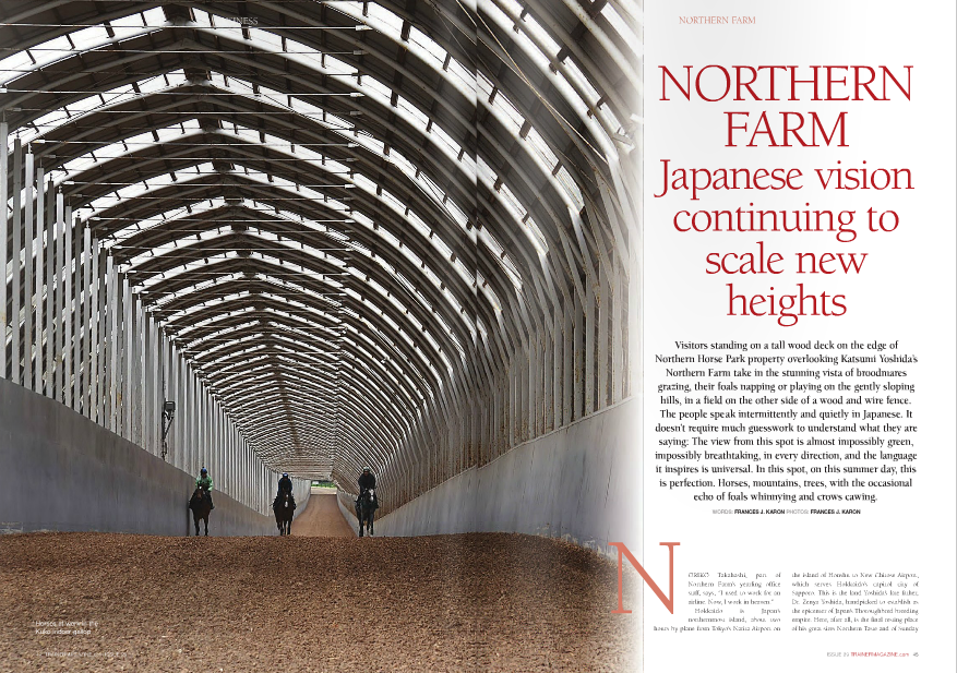 "ORIKO Takahashi, part of Northern Farm's yearling office staff, says, ""I used to work for an airline. Now, I work in heaven."" Hokkaido is Japan's northernmost island, about two hours by plane from Tokyo's Narita Airport on ISSUE 29 TRAINERMAGAZINE.com 45 NORTHERN FARM Japanese vision continuing to scale new heights NORTHERN FARM Visitors standing on a tall wood deck on the edge of Northern Horse Park property overlooking Katsumi Yoshida's Northern Farm take in the stunning vista of broodmares grazing, their foals napping or playing on the gently sloping hills, in a field on the other side of a wood and wire fence. The people speak intermittently and quietly in Japanese. It doesn't require much guesswork to understand what they are saying: The view from this spot is almost impossibly green, impossibly breathtaking, in every direction, and the language it inspires is universal. In this spot, on this summer day, this is perfection. Horses, mountains, trees, with the occasional echo of foals whinnying and crows cawing. WORDS: FRANCES J. KARON PHOTOS: FRANCES J. KARON the island of Honshu to New Chitose Airport, which serves Hokkaido's capitol city of Sapporo. This is the land Yoshida's late father, Dr. Zenya Yoshida, handpicked to establish as the epicenter of Japan's Thoroughbred breeding empire. Here, after all, is the final resting place N of his great sires Northern Taste and of Sunday Silence, the greatest of them all in these parts, interred at nearby Shadai Stallion Station, which is jointly managed by Katsumi and his brothers, Teruya and Haruya, and where eight of the nine active 2013 top Japanese sires stand. A forward-thinking pioneer, Zenya Yoshida's presence in the racing industry continues to be felt on the global stage, thanks to his and his sons' belief in Sunday Silence, the near-black son of Halo in whom American breeders weren't especially interested. Yoshida's Westernstyle brown felt hat and binoculars are on display in a gallery at Northern Horse Park, which opened in 1989. The bald face of chestnut Northern Taste, the Group 1 winner and outstanding sire in whose honor the park was named, appears in many photos in the gallery, offering an amuse bouche, so to speak, of Yoshida's love for horses. The picture of his parents – Mr. and Mrs. Zensuke Yoshida – in Kentucky posing with Man o' War in 1928, when Zenya was about seven years old, attests that he came by his interest in great Thoroughbreds naturally. Various racing memorabilia that can barely begin to detail the breadth of the influence Zenya Yoshida set in motion lies behind other display cases. There is the blanket of flowers that draped Cesario after she won the American Oaks-G1 at Hollywood Park, and one of her ""We find barns we didn't know were there. 'Oh, is this a new barn?' 'No, it's been here ten years!'"" The mares, and the pedigrees of the foals and yearlings, encountered at each of these barns are a pantheon of international equine stars. Three female Horses of the Year – Azeri (U.S.), Buena Vista (Japan), and Night Magic (Germany) – will one day be joined in the paddocks by reigning Japanese Horse of the Year Gentildonna, a Northern Farm homebred racing for Sunday Racing Co. and whose dam, Donna Blini, was purchased by Katsumi Yoshida at the end of her three-year-old season for 500,000 guineas (about $1,000,000) at Tattersalls a year after she had won England's Group 1 Cheveley Park Stud Stakes. For now, Donna Blini can lay claim as queen of the producers, but Azeri remains in the spotlight: At the 2013 Japan Racing Horse Association (JRHA) Select Sale of yearlings and foals on July 8-9, her suckling colt by Deep Impact was the most sought after individual, selling to Desk Valet Co. Ltd. for ¥240 million (about $2.35 million). The select sale, first held in 1998, has a distinctively local flair. Shunsuke Yoshida, Katsumi's son, says, ""Selling horses privately as a foal or weanling is a Japanese custom. My father started the select sales and wanted to fit the European way to the Japanese style."" The yearling sale is more standard to other countries, but payment for the foals is unique: half the sales price is due in July, and the other half in March. Foals from the Northern consignment return A statue of Zenya Yoshida and Northern Taste at Northern Horse Park to the farm, where they remain until the 46 TRAINERMAGAZINE.com ISSUE 29 shoes. Orfevre's dirtied Tokyo Yushun-Japanese Derby-G1 saddlecloth contrasts the shiny golden trophy he earned in that race. Wajima's Eclipse Award is behind a glass case, not far from raised individual wood display columns holding Japanese championship trophies. In the museum, too, are Sunday Silence's stall door, feed tub, and halter. There's a photo, appropriately larger than life, of the stallion's head peering from behind the iron bars of his door. For the American and Japanese racing fans who appreciate the impact he made on the racetrack and at stud, it is humbling, giving a feeling of closeness to the Kentucky Derby, Preakness, and Breeders' Cup Classic winner, 1989 Horse of the Year, and Japanese foundation sire who appears in the pedigrees of so many champions raised on Hokkaido as サンデーサイレンス. On the grounds of the horse park is a lifesized statue of Yoshida – wearing his signature hat – patting his Northern Dancer stallion Northern Taste, whom he purchased for $100,000 at the 1972 Saratoga yearling sale. Northern Taste won the Group 1 Prix de la Foret before retiring to Shadai Stallion Station, where there is another full-scale statue, this one of Yoshida sitting back and relaxing with his hat pushed back on his head, serenely surveying a grassy area beside one of the barns in the stallion complex. It is an image of a man completely at peace with his world. Sadly, Zenya Yoshida never got to see the breedshaping achievements of Sunday Silence, whose oldest foals were yearlings when he passed away in December of 1993. Son Katsumi began operating as Northern Farm in 1994. The nursery that consistently produces some of the best racehorses seen in Japan and, increasingly, the world, is spread out over 900 or so hectares (more than 2,200 acres) of prime, impeccably maintained land. Its immensity prompts blacksmith and Irish transplant Nathy Kelly, who has worked at the farm for more than four years and is married with family to a woman from Japan, to joke, ollowing March 31st, and the new owner does not get bills, regardless of injury or illness while under the farm's care. That breeders should bear all of the financial responsibility for these foals is a personal decision, and not a condition of the JRHA sale. ""It's the seller's responsibility,"" shrugs Shunsuke. Another custom is selling the first and last hips of each session, all four of which were consigned by Northern Farm this year, without reserve as a gesture of goodwill. Overall, at this year's JRHA sale, Northern Farm sold seven of the top eleven highestpriced yearlings – including the top two, Deep Impact colts out of U.S. Graded stakes winners Shes All Eltish and Persistently for ¥180 million ($1.76 million) and ¥170 million ($1.66 million) respectively – and six of the top ten foals, led by the Azeri and a Deep Impact colt out of Argentine Group 1 winner Malpensa for ¥230 million ($2.25 million). Some four hundred foals are born on the farm per year. Shunsuke Yoshida says, ""We want to sell most of the foals and yearlings, if they are good to sell. But if we have progeny of Buena Vista or Gentildonna, they'll go to Sunday Racing. If we have one from Cesario, he or she goes to Carrot Club,"" – referring to the two Northern Farm partnerships for which Above: The view of Northern Farm from the 26-foot tall deck at Northern Horse Park Right: Champion sprinter and miler Kinshasa No Kiseki goes into his barn at Shadai Stallion Station those mares raced or, as with Gentildonna, currently race. Shunsuke says, ""My grandfather would be surprised at how big the farm is. When my father took a piece of his farm (in 1994), we had about 120 broodmares. Now we have more than 550."" The property has grown three or four times in size as well and is considerably self-sufficient, although hay is imported from the U.S. and Canada. A fourth-generation horseman, Shunsuke Yoshida's earliest memory of racing was of a big success for the family. ""My grandfather,"" he says, ""had a horse called Amber Shadai and he won the (1981 Grade 1) Arima Kinen Grand Prix. My parents and my grandparents went to the races (at Nakayama Racecourse in Honshu). I stayed in Hokkaido. As soon as Amber Shadai won people kept calling my house. I was six or seven but I kept taking the phone calls, I kept saying, 'Thank you very much!' We didn't win big races often, only once a year or once every two or three years, so the win in the Arima Kinen was a big thing."" He remembers, too, that his grandfather was ""was very excited to have Sunday Silence."" Did Zenya Yoshida think when the son of Halo arrived in Japan in 1990 that he was going to be as consequential as he turned out to be? ""Not really, no,"" Shunsuke laughs. ""At that time we had Northern Taste, who was very successful, but he was the only successful sire for us. My grandfather and my father and his brothers kept buying the stallions but they were never successful. The good thing about my grandfather is he kept trying!"" Now, sons and grandsons of Sunday Silence, who Shunsuke calls the ""backbone"" of their farm, dominate the Japanese sire ranks, with so much saturation that in recent years Shadai Stallion Station has imported War Emblem (by Our Emblem), who turned out to be a notoriously shy breeder; Harbinger (Dansili); and Workforce (King's Best), and the Yoshidas continue to spend money on high-end North American, Australian, and European broodmares or broodmare prospects. ""We need good stallions for our Sunday Silence mares, so we keep buying stallions."" So far, sons of Kingmambo have been a natural fit for Sunday Silence-line mares: King Kamehameha has seven Graded stakes winners bred on the cross, while El Condor Pasa, who died young, got multiple Grade 1 winner Vermilion, who is one of four Kingmambo-line horses at Shadai Stallion Station. King Kamehameha's Grade 1-winning son Rulership bred a lot of mares tracing to Sunday Silence blood in this, his first season. Kentucky Derby winner War Emblem – who is in isolation and not persevered with in the breeding shed anymore – might have been another to work well with Sunday Silence; among his 121 registered foals were a total of seven stakes winners, two of which, including Group 3 winner King's Emblem, had dams by Sunday Silence. The logistics of breeding hundreds of mares a year from Northern Farm can get a little tricky, so mating decisions are often made by checking to see which stallions are available the day a mare needs to be covered and what other mares also need to get in. ""Maybe we decide this one broodmare is very important so she's going to Deep Impact. Really, it's like so,"" explains Shunsuke. Most of the better racemares and/or producers, such as Gentildonna's dam Donna Blini and Azeri, did visit Deep Impact's book again this year, though as the sire of Orfevre and 2013 Grade 1 winners Fenomeno and Gold Ship, Stay Gold (by Sunday Silence), located at Big Red Farm, got a few of the farm's nice mares as well, such as Frizette Stakes-G1 winner Sky Diva, whose 2012 Deep Impact colt topped that year's select sale foal session. Katsumi Yoshida's name appears on the docket at major breeding stock and other sales in the U.S., Australia, and Europe on a regular basis. Imported horses fly into Narita and spend three weeks in quarantine before taking the ferry to Hokkaido. From the time they leave quarantine until they arrive at Northern Farm, it's about a 20-hour journey. Import taxes are roughly $40,000 per horse. The inspection team at Keeneland and FasigTipton is headed by Shunsuke, who goes with his ""first impression"" when he's looking at a potential purchase. Acquisitions from last year's sales include Zazu ($2.1 million) and Tapitsfly ($1.85 million), who, like Azeri, are in foal to Deep Impact. Shunsuke Yoshida, a father of two with a quick sense of humor and who is well-spoken in English, studied economics at Keio University in Tokyo, although the former Japanese Junior show jumping champion admits, ""Show jumping came first – no study, only show jumping!"" He gained work experience outside of Japan with broodmares at Three Chimneys, yearlings at Lane's End, and two-year-olds with Niall Brennan, from the end of 1998 to the spring of 2000, and visited the winner's circle at Churchill Downs when Fusaichi Pegasus, in whom his family had purchased an interest at two, won the Kentucky Derby. When he's not traveling for races or to check in on horses at one of two of Northern Farm's training centers, Shigaraki in Shiga and Tenei in Fukushima – both on Honshu – he spends mornings focused on the horses in pretraining, often joined by Katsumi. ""He loves to watch the horses training!"" Shunsuke says. On-site facilities include a massive pretraining and lay-up operation with two covered uphill gallop courses – 900-meter Kuko and 800-meter Hayakita – on a deep bed of topquality Hokkaido wood chips. Even in mid- summer, the arrows on the road to help keep drivers on snow-covered roads serve as reminders of the extremely harsh winters in Hokkaido. It is not hard to imagine how the covered gallops, which have tall curved metal roofs with skylights, make the conditions bearable for horses and riders throughout the year. ""It works quite good. It was a good idea!"" says Shunsuke Yoshida. Nathy Kelly agrees: ""We call them the eighth wonder of the world."" There are subtle differences to the courses, with Hayakita having a steeper grade but with more spring in the footing and slightly less taxing than Kuko, in the opinion of farm vet Dr. Hirofumi Kawasaki. Besides the two main gallops, there are also an outdoor 800-meter wood chip gallop and a 600-meter indoor canter at Hayakita, an outdoor 1,000-meter dirt course at Kuko, and more than 15 treadmills between both. The foyer at Kuko, where Shunsuke spends most of his mornings, serves as a reminder of traditional Japanese culture, with worn shoes neatly piled around on the floor and in a corner, a rack of slippers for people to change into before entering the main room. Training equipment, however, is high-tech. Horses wear heart monitors and computer chips, and their lactate levels are monitored regularly. The covered gallops have cameras located throughout, streaming live feed to six televisions in a viewing room at the steep end of each track, where riders, who get on three or four mounts per day, check their time on an outdoor screen. Footage of the works is kept for three months. Sixteen barn managers – ten at Kuko and six at Hayakita – each oversee a group of 30-60 horses each. Yuya Takami, for instance, is in charge of C-1 (""one"" is ""ichi"" in Japanese), and his graduates include 2011 Triple Crown winner Orfevre, who was not bred at Northern but was broken there and races for Sunday Racing; successful young U.S.-based sire Hat Trick, a Group 1 winner in Hong Kong for Carrot Club; and three Grade 1 winners still in training – Curren Black Hill (NHK Mile Cup), Fenomeno (Tenno ShoSpring), and Real Impact (Yasuda Kinen) – all of whom are currently back in his barn for some R&R. The young horses are exercised on the wood chip gallops, as it is thought that the all weather surface is too fast for two-year-olds at this stage. Kawasaki reminds that ""this is only a training center,"" adding that 15 seconds per furlong is the ideal for their juveniles before they are shipped off to one of 90 trainers employed by the various racing partnerships managed by Northern Farm. Four hundred-plus head receive their early lessons on these grounds annually. The last three Japanese Horses of the Year – Gentildonna (Kuko), Orfevre (Kuko), and Buena Vista (Hayakita) – got their early starts at these pretraining stables. Deep Impact, Japan's 2005 and 2006 Horse of the Year and currently the hottest horse in the country, was also put through his paces at Hayakita prior to going to trainer Yasuo Ikee, whose son Yasutoshi trains Orfevre. Shunsuke Yoshida takes pride in their educational program. ""Before we send the horses to trainers, we make them practice, we educate them. They need to stand still in the stalls, but we don't force them to go out quickly here. We just get them to have experience. To make them dash from the barrier, I think it's a jockey's job. If you feel that in Japan loading horses in the barrier is very quick,"" – and it is – ""I think it's our mentality: We can't wait. I feel that too. When I go to races in other countries, it feels very slow. 'Please load!' I know the mentality here is different, so I understand they can be slow. When you're getting aboard a Japanese airline, you feel it, too."" The racing syndicates managed by Northern Farm also fall under Shunsuke's purview. In what is surely an understatement, he says, ""I do many small things."" The syndicates are very popular. ""Last Monday was the (syndicate) deadline. Most of the yearlings already sold – we sell 40 shares in each horse – but some yearlings have more than 200 people wanting to be in on them, so we needed to have a lottery. Because some people have a longer relationship with us, we give them seniority, but ten out of the 40 are lottery, and then new people with us can have a share."" Just one very lucky partner owns a share in Triple Crown winners Orfevre and Gentildonna. A number of the 600 Northern Farm employees – this figure includes part-time help – are tasked with keeping syndicate members aware of what is going on with their horses. Owners can log on to a website and get updates every three or four days on the horses actively in training, and they frequently come to the farm to look at their horses at Kuko and Hayakita. Horseracing is popular in Japan, but compared to 15 or 20 years ago, it's less so, Shunsuke opines, citing the Internet and mobile phones as distractions that cut into free time. Also, he suggests, ""Maybe many people wait to get into horses. They keep working until they turn 60, working hard and never looking around, and suddenly when they don't have to go to the company and they want something to do,"" they turn to horseracing. He would like to see more young people at the track. ""Sometimes people of a younger age never understand what older people are thinking about."" It costs roughly ¥600,000 ($5,900) per month to keep a horse in training with JRA trainers – JRA being the top tier racecourses in the country. Prize money is strong, which for horses that are pulling their weight offsets the high training fees so that ""not so many people want to sell,"" explains Shunsuke. ""My mother owns Jaguar Mail,"" a Grade 1 winner who remains in training at age seven. ""He ran second in (the Hong Kong Vase-G1) twice. When he was three or four, people wanted to buy him but we knew he was going to be a Group stakes performer."" Japan has gradually been opening up races and granting ownership licenses to citizens of other countries. Shunsuke Yoshida would like to see more foreigners licensed, as well as locally bred horses participating internationally. ""I want to make many people know about Japanese racing,"" he says. ""I'm kind of proud of Japanese racing and how JRA (Japanese Racing Association) is organized. I want people to know Japanese racing and the quality of the horses and horseracing."" Many employees of Northern Farm live on the premises and make use of one of the meal plan options at the full-service dining hall. Staff on the Hokkaido properties includes six vets and eight full-time blacksmiths, two of the latter being Japanese champion shoemakers. ""Quite amazing,"" says Kelly, showing a thick metal bar that these men can fashion into a perfect Japanese-style horseshoe at a rate of two in 25 minutes. The farm brings podiatry expert Dr. Scott Morrison from Rood & Riddle in Kentucky to look at their stock two or three times a year. Vets and farriers keep a close eye on conformation as well, performing corrective surgery, says Nathy Kelly, if it will help the horse. ""There's no stone unturned here. If they need it, they get it."" Another system that works well is that radiographs are available for viewing within minutes in offices across the farm within minutes after being processed. Hirofumi Kawasaki stresses what he believes is the crucial factor in Northern Farm's success: ""We have many good-pedigreed mares and stallions, but I think the most important thing – it's very, very important – is the human aspect, and staff and veterinary education. Katsumi thinks so, too. Next comes pedigree and the facility. A horse could have a very good pedigree but if the people aren't good he won't learn the important things right."" A veterinarian for ten years, Kawasaki's only employment since obtaining his license has been here at the farm. ""For many people,"" he says, ""this is their first job and they never leave. All the staff loves Katsumi. I love it here. This is very, very important, too."" What would Shunsuke Yoshida like for the future of Northern Farm? ""Basically that we keep going this way."" But for a culture driven by efficiency and perfection, don't think that means that they're satisfied with maintaining the status quo: ""We change. We find we need to change every year, every month,"" Shunsuke adds. That statue at Shadai Stallion Station of a contented Zenya Yoshida suggests that the great man knew his dream would be in good hands. Each success attached to the hallowed grounds of Northern Farm pays tribute to him, who had a vision for Japanese racing – a vision that his son Katsumi and grandson Shunsuke continue to advance to heights that not even Zenya may have believed possible. n"
