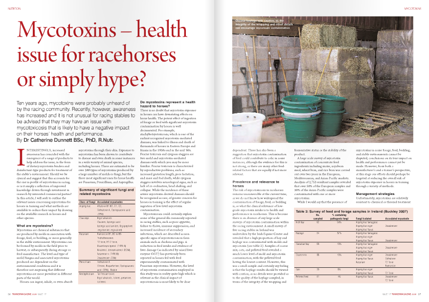 NTERESTINGLY, increased awareness has coincided with the emergence of a range of products to help address the issue, in the form of dietary mycotoxin binders and disinfectant-type products for treatment of the stable's environment. Should we be cynical and suggest that this accounts for the rise in profile of mycotoxins in racing, or is it simply a reflection of improved knowledge driven through investment in research by interested commercial parties? In this article, I will seek to outline the relevant issues concerning mycotoxins for horses in training and what methods are available to reduce their impact by drawing on the available research in horses and other species. What are mycotoxins? Mycotoxins are chemical substances that are produced by molds in association with forage, feed, or bedding, or more generally in the stable environment. Mycotoxins can be formed by molds in the field prior to harvest, or subsequently during storage or feed manufacture. The level and type of mold/fungus and associated mycotoxins produced are dependent on the environmental conditions and it is therefore not surprising that different mycotoxins are more prevalent in different parts of the world. Horses can ingest, inhale, or even absorb mycotoxins through their skin. Exposure to mycotoxins has been shown to contribute to disease and even death in some instances in a wide variety of animal species, including horses. There are estimated to be over 300 types of mycotoxins produced by a large number of molds or fungi, but the three most significant ones for horse health are Fusarium, Penicillium, and Aspergillus. Summary of significant fungi and related mycotoxins Class of Fungi Associated mycotoxins Aspergillus Aflatoxin B1 B2, G1, G2, Ochratoxin A, Cyclopiazonic acid (CPA) Claviceps Ergot alkaloids Clavines, Lysergic acid Lysergic acid amides, Ergopeptines (ergotomine, ergovaline) Fusarium Fumonisin B1, B2 & B3 Trichothencenes T2 toxin, HT-2 toxin, Diacetoxyscirpenol (TYPE A) Nivalenol, deoxynivalenol (DON), fusarenon-x (TYPE B) Zearalenone (ZON) Penicillium Ochratoxin A Citrinin, Roquefortine, Cyclopiazonic acid (CPA), Patulin Neotyphodium Tall fescue toxins Ergot alkaloids, lolines, peramine, lolitrems Do mycotoxins represent a health hazard to horses? There is no doubt that mycotoxin exposure in horses can have devastating effects on horse health. The potent effect of ingestion of forage or feed with significant mycotoxin contamination by horses is well documented. For example, stachybotryotoxicosis, which is one of the earliest recognized mycotoxin-mediated diseases, was linked to illness and death of thousands of horses in Eastern Europe and Russia in the 1930s and in the mid '80s. Fescue toxicosis and ryegrass staggers are two mold and mycotoxin-mediated diseases with which you may be more familiar. Fescue toxicosis is characterized by reproductive problems, such as increased gestation length, poor lactation, and mare and foal death, while ryegrass staggers involves neurological signs, such as lack of co-ordination, head shaking, and collapse. While the incidence of these severe mycotoxin-derived diseases should be recognized as rare, of greater concern for horses in training is the effect of regular ingestion of low-level mycotoxin contamination. Mycotoxicosis could certainly explain some of the general ills commonly reported in racing stables, such as poor appetite, failure to thrive, immune suppression, and increased incidence of secondary infections, which are described as nonspecific signs of mycotoxicosis in farm animals such as chickens and pigs. A reduction in feed intake and evidence of liver damage (as indicated by raised liver enzyme GGT) has previously been reported in horses fed with feed experimentally contaminated with Fusarium mycotoxins. However, the level of mycotoxin contamination employed in this study was in reality quite high which is relevant as the clinical impact of mycotoxicosis is most likely to be dose dependent. There has also been a suggestion that mycotoxin contamination of feed could contribute to colic in some instances, although the evidence for this is not strong, as there are many other feedrelated factors that are equally if not more relevant. Prevalence and relevance to horses The risk of mycotoxicosis in racehorses remains unanswerable at the current time, as we do not know how widespread the contamination of forage, feed, or bedding is, or what the clinical relevance of lowgrade mycotoxin intake is to health and performance in racehorses. This is because there is an absence of any large scale surveys of mycotoxin contamination within the racing environment. A small survey of five racing stables in Ireland was undertaken by the Irish Equine Centre and revealed that a high proportion of hay and haylage was contaminated with molds and mycotoxin (see table 2). Samples of coarse mix, oats, and pelleted feed revealed a much lower level of mold and mycotoxin contamination, with the pelleted feed having the lowest content. However, this was a small sample and certainly my feeling is that the haylage results should be viewed with caution, as no details were provided as to the quality of the haylage sampled, in terms of the integrity of the wrapping and Table 2: Survey of feed and forage samples in Ireland (Buckley 2007) No. % containing sampled pathogenic fungi Fungi Isolated Associated mycotoxin Irish hay 62 50% Aspergillus fumagatus Aspergillus niger Zearalenone Aspergillus flavus Haylage 54 37% Aspergillus fumagatus Aspergillus niger Aspergillus flavus Zearalenone Canadian hay 63 13% Aspergillus fumagatus Aspergillus niger Zearalenone Aspergillus flavus Coarse mix 38 13% Aspergillus niger Zearalenone Aspergillus flavus Ochratoxin Fusarium T2 Toxin Fumonisin Oats 26 8% Aspergillus niger Aspergillus flavus T2 Toxin Pelleted feed 51 4% Aspergillus flavus Zearalenone T2 Toxin fermentative status or the stability of the product. A large scale survey of mycotoxin contamination of concentrate feed ingredients including maize, soyabean meal, wheat bran, and rice bran was carried out over two years in the European, Mediterranean, and Asian-Pacific markets. Analysis of 2,753 resultant samples revealed that over 50% of the European samples and 30% of the Asian-Pacific samples were contaminated with one or more mycotoxins. While I would say that the presence of dependent. There has also been a suggestion that mycotoxin contamination of feed could contribute to colic in some instances, although the evidence for this is not strong, as there are many other feedrelated factors that are equally if not more relevant. Prevalence and relevance to horses The risk of mycotoxicosis in racehorses remains unanswerable at the current time, as we do not know how widespread the contamination of forage, feed, or bedding is, or what the clinical relevance of lowgrade mycotoxin intake is to health and performance in racehorses. This is because there is an absence of any large scale surveys of mycotoxin contamination within the racing environment. A small survey of five racing stables in Ireland was undertaken by the Irish Equine Centre and revealed that a high proportion of hay and haylage was contaminated with molds and mycotoxin (see table 2). Samples of coarse mix, oats, and pelleted feed revealed a much lower level of mold and mycotoxin contamination, with the pelleted feed having the lowest content. However, this was a small sample and certainly my feeling is that the haylage results should be viewed with caution, as no details were provided as to the quality of the haylage sampled, in terms of the integrity of the wrapping and Table 2: Survey of feed and forage samples in Ireland (Buckley 2007) No. % containing sampled pathogenic fungi Fungi Isolated Associated mycotoxin Irish hay 62 50% Aspergillus fumagatus Aspergillus niger Zearalenone Aspergillus flavus Haylage 54 37% Aspergillus fumagatus Aspergillus niger Aspergillus flavus Zearalenone Canadian hay 63 13% Aspergillus fumagatus Aspergillus niger Zearalenone Aspergillus flavus Coarse mix 38 13% Aspergillus niger Zearalenone Aspergillus flavus Ochratoxin Fusarium T2 Toxin Fumonisin Oats 26 8% Aspergillus niger Aspergillus flavus T2 Toxin Pelleted feed 51 4% Aspergillus flavus Zearalenone T2 Toxin mycotoxins in some forage, feed, bedding, and stable environments cannot be disputed, conclusions on its true impact on health and performance cannot yet be made. However, from both a manufacturer's and a trainer's perspective, at this stage our efforts should perhaps be targeted at reducing the overall risk of mycotoxin exposure in horses in training through a variety of methods. Management strategies Unfortunately, mycotoxins are relatively resistant to chemical or thermal treatment mycotoxins within the gut, thus preventing, or at least reducing, their absorption by the horse. There are numerous mycotoxin binding agents available commercially including bentonites (clay), aluminosilicates, zeolites, and glucomannan (yeast) derivatives. The only mycotoxin binder that has been evaluated in horses thus far is derived from yeast (Saccharomyces cerevisiae 1026) cell walls. When this was fed at about 5g per day it was able to improve appetite and reduce signs of liver damage (raised GGT) in horses consuming a ration that was contaminated with a number of Fusarium mycotoxins compared to the nonsupplemented control group of horses. Some feed companies are already adding mycotoxin binding agents to their feed, although they can of course be top dressed onto the racing ration.. Forage Ingestion and inhalation of mycotoxins in forage is an issue for horses. A link has and so once they are formed they are a challenge to remove from feed ingredients, finished feed, or indeed the stable environment. However, there are a number of practices that can help to minimize exposure to mycotoxins. Feed manufacturers Most feed manufacturers are very aware of the potential issue with mycotoxin contamination of feed, and their strategy is driven by a combination of existing legislation and guidelines designed to reduce the risk of mycotoxin contamination, in combination with 'going that extra mile' as part of their due diligence. There are a number of measures that feed manufacturers take to minimize mycotoxin contamination. Pre-harvest strategy – Use of diseaseresistant varieties to reduce mycotoxin formation. In addition, certain field management techniques such as crop rotation and irrigation can reduce mycotoxin formation in the field. Processing techniques – Sieving to remove cracked and damaged grains is helpful, as these are more likely to harbor fungal growth. Washing of grains can also reduce the mycotoxin load, as they are primarily found on the outer surface of the grain. Acid-based mold inhibitors are also used extensively to prevent mold and mycotoxin formation. Bacterial deactivation – microorganisms including certain Lactobacillus species have been reported as having potential for detoxifying mycotoxins in animal feed and forage, although no work in this area has been carried out in horses. Mycotoxin binding/sequestering agents – These ingredients have physical properties which allow them to bind NUTRITION 38 TRAINERMAGAZINE.com ISSUE 17 already been made between inhaled mycotoxins and the development of equine recurrent airway obstruction (RAO). Routine analysis of forage for mycotoxins is relatively expensive and it is also a bit like looking for the proverbial needle in a haystack, as contamination may not be uniformly distributed. However, a simple total mold and yeast analysis, which is much more economical, may give a broad indication of how clean a particular batch of forage is. Soaking hay – While mycotoxins are soluble in water and some will be lost during the soaking process, if hay needs to be soaked, perhaps it is not good enough to be fed to horses in training. Steaming hay – The practice of steaming hay has increased in popularity in racing stables and while this should not be used to condone buying lower quality hay, research does indicate that steaming forage helps to limit the exposure of horses in training to molds. However, as far as I am aware the impact of the steaming process on the presence of mycotoxins in forage has not been evaluated. Stable cleanliness Residues of feed in buckets, mangers, barrows, and feed bins are an open invitation for mold and associated mycotoxin growth and so should be avoided. The general standard of cleanliness in the feed room should also be consistently high. Dispensing feed directly from bags, rather than into bins or barrows, is preferable, but where feed components need to be mixed, ensure everything used is washed thoroughly on a regular basis. In addition, feed tubs in stables should ideally be totally removable, again to allow thorough cleaning. Hay and forage needs to be stored carefully to reduce the likelihood of mold growth and a well-ventilated building that is dry and clean is essential for this purpose. In summary, mycotoxin contamination of feed, forage, and bedding is probably a reality for horses in training, and the potential deleterious effects of mycotoxins on appetite, immune function, and overall health and well-being may limit exercise performance. Much more research is needed to assess the current level of exposure to mycotoxins and the associated clinical impact. In the absence of equivocal data, it is sensible to take active steps to reduce the exposure to molds and mycotoxins and certainly where poor performance, loss of appetite, failure to thrive, or other widespread health effects are experienced within a stable, it is worthwhile to eliminate mycotoxin exposure as a potential cause.