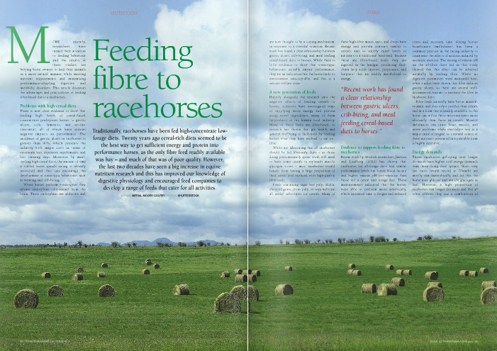 "More recently, researchers have turned their attention to feeding behaviour and the results of these studies are helping horse owners to feed their animals in a more natural manner, while meeting nutrient requirements and minimising performance-crippling digestive and metabolic disorders. This article discusses the advantages and practicalities of feeding fibre-based diets to racehorses. Problems with high-cereal diets There is now clear evidence to show that feeding high levels of cereal-based concentrates predisposes horses to gastric ulcers, colic, laminitis, and set-fast (azoturia), all of which have serious negative impacts on performance. The incidence of gastric ulcers in racehorses is greater than 90%, which presents the industry with major costs in terms of veterinary fees, expensive supplements, and lost training days. Moreover, by meal- feeding high-cereal diets, the amount of time a stabled horse spends eating is severely restricted and this can encourage the development of stereotypic behaviours such as weaving and crib-biting. When horses perform stereotypies they release endorphins (dopamine) from the brain. These endorphins are addictive and are now thought to be a 'coping mechanism' in response to a stressful situation. Recent work has found a clear relationship between gastric ulcers, crib-biting, and meal feeding cereal-based diets to horses. While there is little evidence to show that stereotypic behaviours actually impair performance, they are an indication that the horse finds its environment unacceptable, and this is a serious welfare issue. A new generation of feeds Happily alongside the research into the negative effects of feeding cereals to horses, scientists have investigated ways of supplying more energy and protein using novel ingredients, many of them by-products of the human food industry. Many of these feeds are fibre-based, as research has shown that gut health and general wellbeing is facilitated by feeding horses what they have evolved to eat i.e., fibre. While not advocating that all racehorses should be fed fibre-only diets – as those doing predominantly sprint work will need to have some cereals to replenish muscle glycogen stores – most racehorses would benefit from having a large proportion of their cereal feed replaced with high-quality fibre feeds. Feeds containing sugar beet pulp, alfalfa, chopped grass, citrus pulp, or soya hulls are all useful substitutes for cereals. Many of these high-fibre mixes, nuts, and chops have energy and protein contents similar to cereals and so supply equal levels of nutrients to a traditional 'hard-feed.' Because these are fibre-based feeds they are digested in the hindgut, producing short chain fatty acids (acetate, propionate, and butyrate) that are readily metabolised to energy. ""Recent work has found a clear relationship between gastric ulcers, crib-biting, and meal feeding cereal-based diets to horses."" Evidence to support feeding fibre to racehorses Recent work by Swedish researchers Jansson and Lindberg (2012) has shown that racehorses fed all-forage diets had similar performance levels but lower blood lactate and higher venous pH post-exercise than those fed a cereal and forage diet. These measurements indicated that the horses were able to perform more aerobically, which increased time to fatigue and reduced stress and recovery time. Giving horses bicarbonate (milkshake) has been a common practice in the racing industry to counteract the effects of acidosis induced by intensive exercise. The raising of venous pH on the all-fibre diets fed in this study showed that this effect can be achieved naturally by feeding fibre. While no digestive parameters were measured here, other studies have shown that fibre reduces gastric ulcers, so there are several well- documented reasons to increase the fibre in racehorse diets. Fibre feeds naturally have better mineral, vitamin, and electrolyte profiles than cereals and in a form that is readily available, so the horse can utilise these micronutrients more efficiently than those in cereals. Mineral imbalances can cause bone, muscle, and nerve problems while electrolyte loss is a major cause of fatigue, so a natural source of these nutrients presented in a palatable form is highly desirable. Energy demands Those racehorses galloping over longer distances have higher total energy demands than those doing short sprints. Short, very fast races (world record at 70km/h) are mostly run anaerobically and for this the horse uses glucose and muscle glycogen as fuel. However, a high proportion of racehorses run longer distances and like all other athletes they use a combination of anaerobic and aerobic energy. As the research above indicated, feeding a substrate such as fibre that is metabolised aerobically can increase the time to fatigue and allow the horse to gallop for longer. If you are concerned that a fibre-only diet is not supplying enough total energy to the horse then adding oil can be a really useful way of getting a little bit more energy in without increasing cereals. Oil is also a better substrate for those doing extended work at it is metabolised to energy aerobically and so provides more ATP (adenosine triphosphate, the body's form of energy) than when glucose is used as the energy substrate. A lot of research has been done on the benefits of feeding fat to horses. Fat is very efficiently digested and is broken down to energy-dense long-chain fatty acids ""A lot of research has been done on the benefits of feeding fat to horses. Fat is very efficiently digested and is broken down to energy-dense long-chain fatty acids and glycerol"" and if not satisfied a horse can rapidly develop the digestive disorders and behavioural problems mentioned above. Fit thoroughbreds can be a bit 'wired' at the best of times, so giving them something to do while in the stable will help them relax. However, all too often forage is regarded as something for the horse to do in the stable and not really seen as a food source. The two most commonly fed long fibres in the UK are hay and haylage. There are advantages and disadvantages to both, but whatever you choose to feed, offer the best quality forage possible so that it makes a valuable contribution to the nutrient content of the diet. Young leafy forages have better energy and protein levels than stemmy mature hays. The availability of protein can be an issue with forage, as much of it is cell- wall bound and therefore not available to the horse. However, if you are feeding high- fibre nuts, mixes, or chop – particularly those containing chopped alfalfa, dried grass, or clover – then your horse will be receiving adequate available protein. Haylage is generally of higher nutrient quality than hay because it is cut at an earlier stage of growth, so it has a higher proportion of leaf to stem. However, it must be well made to be suitable to be fed to horses. Haylage needs to drop to pH 5.4 to ensure a good fermentation and prevent fungal and bacteria growth. In well- fermented haylage, the water-soluble carbohydrates are converted to lactic acid, which preserves the haylage. The lactic acid is readily metabolized in the body to energy. Drier haylage is preserved by excluding air by wrapping; however, once opened this forage quickly deteriorates. Well-made leafy hay can be equal to haylage in nutrient quality but hay like this is hard to get in the UK. Commonly, hay is made when the grass is flowering, and this drops the nutrient content considerably. Furthermore, hay needs to be a minimum of 85% dry matter to prevent mould growth during storage. Even good quality hay contains and glycerol. processed in the liver to glucose, so fat can help to replenish muscle glycogen stores. When fed fat for three weeks the horse is conditioned to preferentially use fat as an energy source instead of glycogen. Glycerol is This glycogen-sparing effect is energetically very useful as it means that the horse is getting the maximum amount of energy from its food as it is being metabolised aerobically, and 'saving' the glycogen for fast work. Glycogen depletion is the major cause of fatigue in horses, so if the animal can fuel its work from another source, it can work for longer. Fat can be added to the diets up to a maximum of 1g/kg bodyweight/day = (500g for a 500kg horse); greater amounts can interfere with hindgut fermentation and is not recommended. Non-working time Many horse owners forget that horses spend most of their time in maintenance and low- level activity, i.e., eating, resting, and walking to and from the gallops, all of which use aerobic energy. To fuel this activity the horse should be using fibre and fat, so feed these in sufficient amounts to ensure that muscle glycogen levels are kept in reserve for more strenuous fast-work. Feeding long fibre (Forage) If given the chance horses will eat for approximately 16 hours per day. This eating pattern evolved when grazing on rough low- nutrient dense grass, which is a world away from what our horses are fed now. The problem is this innate behaviour is very strong significant amounts of dust, which can induce respiratory disorders in horses. Problems with forage While providing ad libitum forage to any stabled horse is the ideal management regime, there are four well-accepted disadvantages that make this difficult to achieve: increased body weight, water holding capacity of fibre, the acidity of haylage, and dust in hay. When feeding low-quality fibre – i.e., stemmy, mature forage – more weight is held within the gut and much of this additional weight is due to the water that is held by the cell-wall fibre. Ellis et al (2002) found that a low- quality forage diet did increase heart rate in exercising horses and thus impaired performance.  More recently, no such negative relationship has been found when high- quality fibre is fed. Leafy forages are more fully digested, hold less water, and have higher protein levels, which Essen- Gustavsson et al (2010) found helped replenish muscle glycogen reserves. Furthermore, Jansson and Lindberg (2012) reported no significant rise in bodyweight or heart rate during exercise when feeding early- cut haylage. So choosing high-quality forage seems to be the key here. Effective conservation of grass into haylage is dependent upon achieving a rapid drop in pH, down to 5.4 over the first few days after wrapping. However, horses suffering from gastric ulceration already have excessive acid in their stomachs and to add to this by feeding acidic forage is unwise. Drier haylage has a higher pH but is more susceptible to bacteria and mould contamination once opened, and this can pose a serious health threat to your horse. In such circumstances it is probably best to choose high-quality hay. Grass species is less important than stage of growth, so any seed or meadow hay that has been well- conserved and has a high proportion of leaf to stem is best. Hay is still the most common forage offered to performance horses in the UK. Even well-made hay contains significant levels of dust, which can cause respiratory disorders. Soaking is the traditional method for reducing airborne dust in hay, but recent work has shown that soaking more than doubles the bacteria content while leaching valuable nutrients, most notably minerals and electrolytes. The best way to deal with respirable-dust bacteria and mould is to thoroughly steam the forage. Research has shown that steaming hay and haylage using a specifically designed spiked steamer that injects steam into the bale reduces respirable particles, bacteria, ""Soaking is the traditional method for reducing airborne dust in hay, but recent work has shown that soaking more than doubles the bacteria content while leaching valuable nutrients"" and mould contamination by greater than 95%. Achieving very high temperatures (in excess of 100C) is key to the efficacy of this process, as partial steaming using a homemade steamer actually increases bacteria content in forage. All organic material, bedding (straw and shavings), cereals, and fibre feeds contain dust. Even bagged and chopped feeds will produce some dust, and this is released into the horse's breathing zone. It is best therefore to avoid initiating any allergic respiratory disorder by feeding chopped forage slightly damp, using dust-extracted bedding material, and thoroughly steaming both hay and haylage. Achieving and maintaining top performance in racehorses is challenging, and injury and problems are never very far away. So minimise the incidence of gastric ulcers, acidosis, and colic by keeping the gut 'happy' by feeding what it is designed to digest. Feeding a fibre-based diet to racehorses is possible, it is just a matter of getting the balance right!"