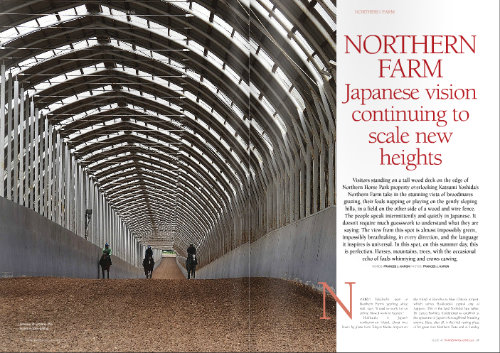 "NORIKO Takahashi, part of Northern Farm's yearling office staff, says, ""I used to work for an airline. Now, I work in heaven."" Hokkaido is Japan's northernmost island, about two hours by plane from Tokyo's Narita Airport on Silence, the greatest of them all in these parts, interred at nearby Shadai Stallion Station, which is jointly managed by Katsumi and his brothers, Teruya and Haruya, and where eight of the nine active 2013 top Japanese sires stand. A forward-thinking pioneer, Zenya Yoshida's presence in the racing industry continues to be felt on the global stage, thanks to his and his sons' belief in Sunday Silence, the near-black son of Halo in whom American breeders weren't especially interested. Yoshida's Western- style brown felt hat and binoculars are on display in a gallery at Northern Horse Park, which opened in 1989. The bald face of chestnut Northern Taste, the Group 1 winner and outstanding sire in whose honor the park was named, appears in many photos in the gallery, offering an amuse bouche, so to speak, of Yoshida's love for horses. The picture of his parents – Mr. and Mrs. Zensuke Yoshida – in ""Selling horses privately as a foal or weanling is a Japanese custom. My father started the select sales and wanted to fit the European way to the Japanese style"" Shunsuke Yoshida Kentucky posing with Man o' War in 1928, when Zenya was about seven years old, attests that he came by his interest in great thoroughbreds naturally. Various racing memorabilia that can barely begin to detail the breadth of the influence Zenya Yoshida set in motion lies behind other display cases. There is the blanket of flowers that draped Cesario after she won the American Oaks-G1 at Hollywood Park, and one of her shoes. Orfevre's dirtied Tokyo Yushun-Japanese Derby-G1 saddlecloth contrasts the shiny golden trophy he earned in that race. Wajima's Eclipse Award is behind a glass case, not far from raised individual wood display columns holding Japanese championship trophies. In the museum, too, are Sunday Silence's stall door, feed tub, and halter. There's a photo, appropriately larger than life, of the stallion's head peering from behind the iron bars of his door. For the American and Japanese racing fans who appreciate the impact he made on the racetrack and at stud, it is humbling, giving a feeling of closeness to the Kentucky Derby, Preakness, and Breeders' Cup Classic winner, 1989 Horse of the Year, and Japanese foundation sire who appears in the pedigrees of so many champions raised on Hokkaido as サンデーサイレンス. On the grounds of the horse park is a life- sized statue of Yoshida – wearing his signature hat – patting his Northern Dancer stallion Northern Taste, whom he purchased for $100,000 at the 1972 Saratoga yearling sale. Northern Taste won the Group 1 Prix de la Foret before retiring to Shadai Stallion Station, where there is another full-scale statue, this one of Yoshida sitting back and relaxing with his hat pushed back on his head, serenely surveying a grassy area beside one of the barns in the stallion complex. It is an image of a man completely at peace with his world. Sadly, Zenya Yoshida never got to see the breed- shaping achievements of Sunday Silence, whose oldest foals were yearlings when he passed away in December of 1993. Son Katsumi began operating as Northern Farm in 1994. The nursery that consistently produces some of the best racehorses seen in Japan and, increasingly, the world, is spread out over 900 or so hectares (more than 2,200 acres) of prime, impeccably maintained land. Its immensity prompts blacksmith and Irish transplant Nathy Kelly, who has worked at the farm for more than four years and is married with family to a woman from Japan, to joke, ""We find barns we didn't know were there. 'Oh, is this a new barn?' 'No, it's been here ten years!'"" The mares, and the pedigrees of the foals and yearlings, encountered at each of these barns are a pantheon of international equine stars. Three female Horses of the Year – Azeri (US), Buena Vista (Japan), and Night Magic (Germany) – will one day be joined in the paddocks by reigning Japanese Horse of the Year Gentildonna, a Northern Farm homebred racing for Sunday Racing Co. and whose dam, Donna Blini, was purchased by Katsumi Yoshida at the end of her three-year-old season for 500,000 guineas at Tattersalls a year after she had won England's Group 1 Cheveley Park Stud Stakes. For now, Donna Blini can lay claim as queen of the producers, but Azeri remains in the spotlight: At the 2013 Japan Racing Horse Association (JRHA) Select Sale of yearlings and foals on July 8-9, her suckling colt by Deep Impact was the most sought after individual, selling to Desk Valet Co. Ltd. for ¥240 million (about £1.6 million/€1.86 million). The select sale, first held in 1998, has a distinctively local flair. Shunsuke Yoshida, Katsumi's son, says, ""Selling horses privately as a foal or weanling is a Japanese custom. My father started the select sales and wanted to fit the European way to the Japanese style."" The yearling sale is more standard to other countries, but payment for the foals is unique: half the sales price is due in July, and the other half in March. Foals from the Northern consignment return to the farm, where they remain until the following March 31st, and the new owner doe  not get bills, regardless of injury or illness while under the farm's care. That breeders should bear all of the financial responsibility for these foals is a personal decision, and not a condition of the JRHA sale. ""It's the seller's responsibility,"" shrugs Shunsuke. Another custom is selling the first and last hips of each session, all four of which were consigned by Northern Farm this year, without reserve as a gesture of goodwill. Overall, at this year's JRHA sale, Northern Farm sold seven of the top eleven highest- priced yearlings – including the top two, Deep Impact colts out of US Graded stakes winners Shes All Eltish and Persistently for ¥180 million (£1.2 million/€1.395 million) and ¥170 million (£1.13 million/€1.3 million) respectively – and six of the top ten foals, led by the Azeri colt and a Deep Impact colt out of Argentine Group 1 winner Malpensa for ¥230 million (£1.5 million / €1.78 million). Some four hundred foals are born on the farm per year. Shunsuke Yoshida says, ""We want to sell most of the foals and yearlings, if they are good to sell. But if we have progeny of Buena Vista or Gentildonna, they'll go to Sunday Racing. If we have one from Cesario, he or she goes to Carrot Club,"" – referring to the two Northern Farm partnerships for which those mares raced or, as with Gentildonna, currently race. Shunsuke says, ""My grandfather would be surprised at how big the farm is. When my father took a piece of his farm (in 1994), we had about 120 broodmares. Now we have more than 550."" The property has grown three or four times in size as well and is considerably self-sufficient, although hay is imported from the US and Canada. A fourth-generation horseman, Shunsuke Yoshida's earliest memory of racing was of a big success for the family. ""My grandfather,"" he says, ""had a horse called Amber Shadai and he won the (1981 Grade 1) Arima Kinen Grand Prix. My parents and my grandparents went to the races (at Nakayama Racecourse in Honshu). I stayed in Hokkaido. As soon as Amber Shadai won people kept calling my house. I was six or seven but I kept taking the phone calls, I kept saying, 'Thank you very much!' We didn't win big races often, only once a year or once every two or three years, so the win in the Arima Kinen was a big thing."" He remembers, too, that his grandfather was ""was very excited to have Sunday Silence."" Did Zenya Yoshida think when the son of Halo arrived in Japan in 1990 that he was going to be as consequential as he turned out to be? ""Not really, no,"" Shunsuke laughs. ""At that time we had Northern Taste, who was very successful, but he was the only successful sire for us. My grandfather and my father and his brothers kept buying the stallions but they were never successful. The good thing about my grandfather is he kept trying!"" Now, sons and grandsons of Sunday Silence, who Shunsuke calls the ""backbone"" of their farm, dominate the Japanese sire ranks, with so much saturation that in recent years Shadai Stallion Station has imported War Emblem (by Our Emblem), who turned out to be a notoriously shy breeder; Harbinger (Dansili); and Workforce (King's Best), and the Yoshidas continue to spend money on high-end North American, Australian, and European broodmares or broodmare prospects. ""We need good stallions for our Sunday Silence mares, so we keep buying stallions."" So far, sons of Kingmambo have been a natural fit for Sunday Silence-line mares: King Kamehameha has seven Graded stakes winners bred on the cross, while El Condor Pasa, who died young, got multiple Grade 1 winner Vermilion, who is one of four Kingmambo-line horses at Shadai Stallion Station. King Kamehameha's Grade 1-winning son Rulership bred a lot of mares tracing to Sunday Silence blood in this, his first season. Kentucky Derby winner War Emblem – who is in isolation and not persevered with in the breeding shed anymore – might have been another to work well with Sunday Silence; among his 121 registered foals were a total of seven stakes winners, two of which, including Group 3 winner King's Emblem, had dams by Sunday Silence. The logistics of breeding hundreds of mares a year from Northern Farm can get a little tricky, so mating decisions are often made by checking to see which stallions are available the day a mare needs to be covered and what other mares also need to get in. ""Maybe we decide this one broodmare is very important so she's going to Deep Impact. Really, it's like so,"" explains Shunsuke. Most of the better racemares and/or producers, such as Gentildonna's dam Donna Blini and Azeri, did visit Deep Impact's book again this year, though as the sire of Orfevre and 2013 Grade 1 winners Fenomeno and Gold Ship, Stay Gold (by Sunday Silence), located at Big Red Farm, got a few of the farm's nice mares as well, such as Frizette Stakes-G1 winner Sky Diva, whose 2012 Deep Impact colt topped that year's select sale foal session. Katsumi Yoshida's name appears on the docket at major breeding stock and other sales in the US, Australia, and Europe on a regular basis. Imported horses fly into Narita and spend three weeks in quarantine before taking the ferry to Hokkaido. From the time they leave quarantine until they arrive at Northern Farm, it's about a 20-hour journey. Import taxes are roughly £35,000, or €50,000, per horse. The inspection team at Keeneland and Fasig- Tipton is headed by Shunsuke, who goes with his ""first impression"" when he's looking at a potential purchase. Acquisitions from last year's sales include Zazu ($2.1 million) and Tapitsfly ($1.85 million), who, like Azeri, are in foal to Deep Impact. Shunsuke Yoshida, a father of two with a quick sense of humor and who is well-spoken in English, studied economics at Keio University in Tokyo, although the former Japanese Junior show jumping champion admits, ""Show jumping came first – no study, only show jumping!"" He gained work experience outside of Japan with broodmares at Three Chimneys, yearlings at Lane's End, and two-year-olds with Niall Brennan, from the end of 1998 to the spring of 2000, and visited the winner's circle at Churchill Downs when Fusaichi Pegasus, in whom his family had purchased an interest at two, won the Kentucky Derby. When he's not travelling for races or to check in on horses at one of two of Northern Farm's training centres, Shigaraki in Shiga and Tenei in Fukushima – both on Honshu – he spends mornings focused on the horses in pre-training, often joined by Katsumi. ""He loves to watch the horses training!"" Shunsuke says. On-site facilities include a massive pre-training and lay-up operation with two covered uphill gallop courses – 900-metre Kuko and 800-metre Hayakita – on a deep bed of top-quality Hokkaido wood chips. Even in mid-summer, the arrows on the road to help keep drivers on snow- covered roads serve as reminders of the extremely harsh winters in Hokkaido. It is not hard to imagine how the covered gallops, which have tall curved metal roofs with skylights, make the conditions bearable for horses and riders throughout the year. ""It works quite good. It was a good idea!"" says Shunsuke Yoshida. Nathy Kelly agrees: ""We call them the eighth wonder of the world."" There are subtle differences to the courses, with Hayakita having a steeper grade but with more spring in the footing and slightly less taxing than Kuko, in the opinion of farm vet Dr Hirofumi Kawasaki. Besides the two main gallops, there are also an outdoor 800-metre wood chip gallop and a 600-metre indoor canter at Hayakita, an outdoor 1,000-metre dirt course at Kuko, and more than 15 treadmills between both. The foyer at Kuko, where Shunsuke spends most of his mornings, serves as a reminder of traditional Japanese culture, with worn shoes neatly piled around on the floor and in a corner, a rack of slippers for people to change into before entering the main room. Training equipment, however, is high-tech. Horses wear heart monitors and computer chips, and their lactate levels are monitored regularly. The covered gallops have cameras located throughout, streaming live feed to six televisions in a viewing room at the steep end of each track, where riders, who get on three or four mounts per day, check their time on an outdoor screen. Footage of the works is kept for three months. Sixteen barn managers – ten at Kuko and six at Hayakita – each oversee a group of 30-60 horses each. Yuya Takami, for instance, is in charge of C-1 (""one"" is ""ichi"" in Japanese), and his graduates include 2011 Triple Crown winner Orfevre, who was not bred at Northern but was broken there and races for Sunday Racing; successful young US-based sire Hat Trick, a Group 1 winner in Hong Kong for Carrot Club; and three Grade 1 winners still in training – Curren Black Hill (NHK Mile Cup), Fenomeno (Tenno Sho-Spring), and Real Impact (Yasuda Kinen) – all of whom are currently back in his barn for some R&R. The young horses are exercised on the wood chip gallops, as it is thought that the all weather surface is too fast for two-year-olds at this stage. Kawasaki reminds that ""this is only a training centre,"" adding that fifteen seconds per furlong is the ideal for their juveniles before they are shipped off to one of 90 trainers employed by the various racing partnerships managed by Northern Farm. Four hundred-plus head receive their early lessons on these grounds annually. The last three Japanese Horses of the Year – Gentildonna (Kuko), Orfevre (Kuko), and Buena Vista (Hayakita) – got their early starts at these pre- training stables. Deep Impact, Japan's 2005 and 2006 Horse of the Year and currently the hottest horse in the country, was also put through his paces at Hayakita prior to going to trainer Yasuo Ikee, whose son Yasutoshi trains Orfevre. Shunsuke Yoshida takes pride in their educational program. ""Before we send the horses to trainers, we make them practice, we educate them. They need to stand still in the stalls, but we don't force them to go out quickly here. We just get them to have experience. To make them dash from the barrier, I think it's a jockey's job. If you feel that in Japan loading horses in the barrier is very quick,"" – and it is – ""I think it's our mentality: We can't wait. I feel that too. When I go to races in other countries, it feels very slow. 'Please load!' I know the mentality here is different, so I understand they can be slow. When you're getting aboard a Japanese airline, you feel it, too."" The racing syndicates managed by Northern Farm also fall under Shunsuke's purview. In what is surely an understatement, he says, ""I do many small things."" The syndicates are very popular. ""Last Monday was the (syndicate) deadline. Most of the yearlings already sold – we sell 40 shares in each horse – but some yearlings have more than 200 people wanting to be in on them, so we needed to have a lottery. Because some people have a longer relationship with us, we give them seniority, but ten out of the 40 are lottery, and then new people with us can have a share."" Just one very lucky partner owns a share in Triple Crown winners Orfevre and Gentildonna. A number of the 600 Northern Farm employees – this figure includes part-time help – are tasked with keeping syndicate members aware of what is going on with their horses. Owners can log on to a website and get updates every three or four days on the horses actively in training, and they frequently come to the farm to look at their horses at Kuko and Hayakita. Horseracing is popular in Japan, but compared to 15 or 20 years ago, it's less so, Shunsuke opines, citing the Internet and mobile phones as distractions that cut into free time. Also, he suggests, ""Maybe many people wait to get into horses. They keep working until they turn 60, working hard and never looking around, and suddenly when they don't have to go to the company and they want something to do,"" they turn to horseracing. He would like to see more young people at the track. ""Sometimes people of a younger age never understand what older people are thinking about."" It costs roughly ¥600,000 (£4,000/€4,650) per month to keep a horse in training with JRA trainers – JRA being the top tier racecourses in the country. Prize money is strong, which for horses that are pulling their weight offsets the high training fees so that ""not so many people want to sell,"" explains Shunsuke. ""My mother owns Jaguar Mail,"" a Grade 1 winner who remains in training at age seven. ""He ran second in (the Hong Kong Vase-G1) twice. When he was three or four, people wanted to buy him but we knew he was going to be a Group stakes performer."" Japan has gradually been opening up races and granting ownership licenses to citizens of other countries. Shunsuke Yoshida would like to see more foreigners licensed, as well as locally bred horses participating internationally. ""I want to make many people know about Japanese racing,"" he says. ""I'm kind of proud of Japanese racing and how JRA (Japanese Racing Association) is organised. I want people to know Japanese racing and the quality of the horses and horseracing."" Many employees of Northern Farm live on the premises and make use of one of the meal plan options at the full-service dining hall. Staff on the Hokkaido properties includes six vets and eight full-time blacksmiths, two of the latter being Japanese champion shoemakers. ""Quite amazing,"" says Kelly, showing a thick metal bar that these men can fashion into a perfect Japanese-style horseshoe at a rate of two in 25 minutes. The farm brings podiatry expert Dr. Scott Morrison from Rood & Riddle in Kentucky to look at their stock two or three times a year. Vets and blacksmiths keep a close eye on conformation as well, performing corrective surgery, says Kelly, if it will help the horse. ""There's no stone unturned here. If they need it, they get it."" Another system that works well is that radiographs are available for viewing within minutes in offices across the farm within minutes after being processed. Hirofumi Kawasaki stresses what he believes is the crucial factor in Northern Farm's success: ""We have many good pedigreed mares and stallions, but I think the most important thing – it's very, very important – is the human aspect, and staff and veterinary education. Katsumi thinks so, too. Next come pedigree and the facility. A horse could have a very good pedigree but if the people aren't good he won't learn the important things right."" A veterinarian for ten years, Kawasaki's only employment since obtaining his license has been here at the farm. ""For many people,"" he says, ""this is their first job and they never leave. All the staff loves Katsumi. I love it here. This is very, very important, too."" What would Shunsuke Yoshida like for the future of Northern Farm? ""Basically that we keep going this way."" But for a culture driven by efficiency and perfection, don't think that means that they're satisfied with maintaining the status quo: ""We change. We find we need to change every year, every month,"" Shunsuke adds. That statue at Shadai Stallion Station of a contented Zenya Yoshida suggests that the great man knew his dream would be in good hands. Each success attached to the hallowed grounds of Northern Farm pays tribute to him, who had a vision for Japanese racing – a vision that his son Katsumi and grandson Shunsuke continue to advance to heights that not even Zenya may have believed possible"