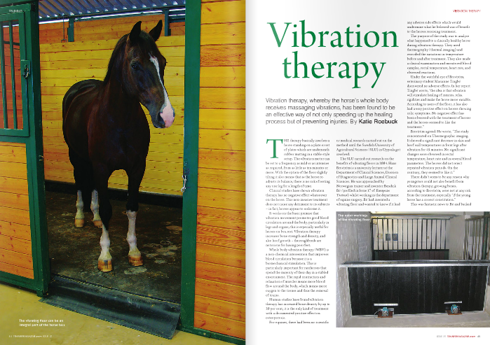 "THE therapy basically involves a horse standing on a plate or set of plates which are underneath rubber matting in a stable-style setup. The vibration motor can be set to a frequency as mild or as intensive as required, from as little as ten minutes or more. With the option of the floor slightly tilting it also means that as the horse re- adjusts its balance, there is no risk of resting any one leg for a length of time.  Clinical studies have shown vibration therapy has no negative effect whatsoever on the horse. This non-invasive treatment does not cause any detriment to its subjects – in fact, horses appear to welcome it.  It works on the basic premise that vibration movement promotes good blood circulation around the body, particularly in legs and organs; this is especially useful for horses on box rest. Vibration therapy increases bone strength and density, and also hoof growth – thoroughbreds are notorious for having poor feet.  Whole body vibration therapy (WBV) is a non-chemical intervention that improves blood circulation because it is a biomechanical stimulation. This is particularly important for racehorses that spend the majority of their day in a stabled environment. The rapid contraction and relaxation of muscles means more blood flow around the body, which means more oxygen to the tissues and thus the removal of toxins.  Human studies have found vibration therapy has increased bone density by up to 20 per cent; it is the only kind of treatment with a documented positive effect on osteoporosis. For equines, there had been no scientific  or medical research carried out on the method until the Swedish University of Agricultural Sciences (SLU) in Uppsala got involved.  The SLU carried out research on the benefits of vibrating floors in 2004. Hans Broström is a university lecturer at the Department of Clinical Sciences, Division of Diagnostics and Large Animal Clinical Sciences. He was approached by Norwegian trainer and inventor Bendick Bö (profiled in Issue 17 of  European Trainer ) whilst working in the department of equine surgery. Bö had invented a vibrating floor and wanted to know if it ha  ny adverse side effects which would undermine what he believed was of benefit to the horses receiving treatment.  The purpose of the study was to analyse what happened to a clinically healthy horse during vibration therapy. They used thermography (thermal imaging) and recorded the variations in temperature before and after treatment. They also made a clinical examination and monitored blood samples, rectal temperature, heart rate, and observed reactions.  Under the watchful eye of Broström, veterinary student Marianne Tingbö discovered no adverse effects. In her report Tingbö wrote, ""the idea is that vibration will stimulate healing of injuries, relax rigidities and make the horse more variable. According to users of the floor, it has also had a very positive effect on horses showing colic symptoms. No negative effect has been observed with the treatment of horses and the horses seemed to like the treatment.""  Broström agreed. He wrote, ""The study concentrated on Thermographic imaging. It showed a significant decrease in skin and hoof wall temperatures in front legs after vibration for 45 minutes. No significant changes were observed in rectal temperature, heart rate and in several blood parameters. The horses did not reject repeated vibration periods. On the contrary, they seemed to like it.""  There didn't seem to be any reason why youngsters could not also benefit from vibration therapy; growing bones, according to Broström, were not at any risk from the treatment, especially ""if the young horse has a correct constitution.""  This was fantastic news to Bö and backed  up what he believed about the vibrating floor. The Norwegian trainer first had the idea about the therapeutic properties of a vibrating floor when travelling a horse to a race in Milan, Italy, in 1992. The horse, Prairie, had tendon problems, but after a bumpy journey he came out of the lorry looking visibly better, according to Bö. The sprinter won his race. ""I spent some time thinking about it,"" Bö said. ""Then in 2001/2002 it from went from idea to product and we developed and made it in 2003.""  Bö and his family patented and sold their first vibrating floor in February 2004, so it's relatively new to the marketplace and still a novel concept as a preventive and healing tool.  Bö, his brothers, and their wives often discuss ideas for inventions and seem to have a few up their sleeves, but they chose to proceed with vibration therapy because of the positive effects it has on horses. Due to Bö's profession as a trainer and formerly a jockey it was a subject close to his heart; he clearly has an affinity with the equine and a good eye for a happy one. But getting  the product off the ground was hard. Bö said, ""It's not simple like if you develop a new screw which you screw in the wall to show people. It is effective for horses in all ways, but the horse business has been up and down and it takes a lot to convince people.""  Bö, who lives and used to train in Sweden, then enlisted the help of the SLU to run clinical trials, keen to know if there could be any harm done to the horse by receiving such treatment.  ""The only time you should not put a horse on the floor is with a recently fractured bone, because as you increase the vibration it will be painful. The rest is a very positive effect,"" Bö said.  ""It is a working product; you have to use it regularly. When the fracture is set it is great for increasing the bone building in the skeleton, making it of better quality during the healing process,"" he explained.  Bö is currently not training professionally, but while he was, he would use his vibrating floor every day – on some horses – for more than five years. X-rays, he said, showed extremely good bone quality.  The tendon injury scan (top) shows improvement after six weeks (above)  Bö added, ""There are a lot of small things in the body that if you don't get rid of, then the blood will be building slowly and all of a sudden you get an injury. Horses which use vibration therapy are in great health even though they train hard and are in old age. It is a great preventative method of getting blood circulating around the body.""  Vibration therapy is relevant for horses which are working every day or at the other extreme – standing still on box rest. In fact it has proved crucial for horses which are stuck in their stables with injuries, as it prevents their bodies from shutting down. An experienced eye can see how well a horse is from their shiny coat, healthy appetite, and bright eyes. This can all still be the case for an injured horse on box rest – with the right therapeutic measures.  In addition, trainers across the world have discovered vibration as a useful tool in warming up and down horses before and after they are worked. Work riders and jockeys have reported horses feeling freer and less stiff after a stint on a vibrating floor. For trainers this is a bonus – it has been found to create significant muscle power increase which means horses can accelerate faster from a standstill. With trotters this means more elasticity and an increase in flexibility. The trials at the SLU implied horses seem to like the treatment, and based on anecdotal evidence, Bö is also convinced of the same.  He said, ""I know they enjoy it. I didn't realise at one point when I had a horse on the floor that only half the floor was working and half of it was not. This is because I walk them on it, come off and then turn the vibration on. After I did this I noticed they were only standing on one side of the floor. So then I went on to find out why and realised they opted to stand on the side that was vibrating rather than the side that wasn't.""  It's clear that vibration therapy, like many forms of non-invasive treatments, has a m ultifaceted effect, whether it's preventing injury, healing, or warming up/warming down those in work. However it also seems to be of help to the horse's digestion system and therefore an aid for colic. The massaging qualities of the unit can help unblock a gut in trouble – and with no harm being caused to the horse while on the plates it makes sense for it to be on there while waiting for veterinary treatment to arrive. It may take a couple of hours, but if the horse gets relief by being put into a relaxed state and possibly even cured of the colic – then why not? Surely it beats walking the horse around the yard for an endless time.  Vibration therapy has been widely accepted and used by human athletes for some time; it makes sense for equine athletes, fit or injured, to do the same."