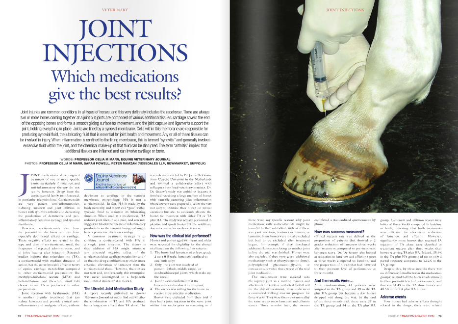 "Joint injuries are common conditions in all types of horses, and this very definitely includes the racehorse. There are always two or more bones coming together at a joint but joints are composed of various additional tissues: cartilage covers the end of the opposing bones and forms a smooth gliding surface for movement, and the joint capsule and ligaments support the joint, holding everything in place. Joints are lined by a synovial membrane. Cells within this membrane are responsible for producing synovial fluid, the lubricating fluid that is essential for joint health and movement. Any or all of these tissues can be involved in injury. When inflammation is confined to the lining membrane, this is termed ""synovitis"" and generally involves excessive fluid within the joint, and the chemical make-up of that fluid can be disrupted. The term ""arthritis"" implies that additional tissues are inflamed and can involve cartilage or bone. WORDS: PROFESSOR CElia M MaRR, EquinE VEtERinaRy JOuRnal PHOtOS: PROFESSOR CElia M MaRR, SaRaH POWEll, PEtER RaMzan (ROSSDalES llP, nEWMaRkEt, SuFFOlk) J OINT medications allow targeted treatment of one or more specific joints, particularly if initial rest and anti-inflammatory therapy do not resolve lameness. Drugs from the corticosteroid family are often used, in particular triamcinolone. Corticosteroids are very potent anti-inflammatories, reducing lameness and joint effusion in horses with synovitis arthritis and decreasing the production of destructive and proinflammatory factors in cartilage and synovial membrane. However, corticosteroids also have the potential to do harm and can have especially detrimental effects on cartilage. These negative effects are related to the type and dose of corticosteroid used, the frequency of repeated administration, and to joint loading after injection. Research studies indicate that triamcinolone (TA), a corticosteroid with medium duration of action, has the most favorable effect in terms of equine cartilage metabolism compared to other corticosteroid preparations like methylprednisolone acetate (MPA) and betamethasone, and therefore, most vets choose to use TA in preference to other preparations. Joint injection with hyaluronate (HA) is another popular treatment that can reduce lameness and provide clinical antiinflammatory and analgesic effects, without detriment to cartilage or the synovial membrane morphology. HA is not a corticosteroid. In fact, HA is made by the body naturally, and it acts as a ""goo"" within synovial fluid to maintain its lubricating function. When used as a medication, HA reduces joint friction and pain, and research suggests it blocks the release of inflammatory products from the synovial lining and might have a protective effect on cartilage. A common treatment strategy is to combine a corticosteroid with HA in a single joint injection. The theory is that addition of HA might minimize any potential negative effect of the corticosteroid on cartilage metabolism and/ or that the drug combination provides more effective alleviation of lameness than the corticosteroid alone. However, theories are not facts and, until recently, this assumption was never investigated in a large-scale randomized clinical trial in horses. The Utrecht Joint Medication Study A report recently published in Equine Veterinary Journal set out to find out whether the combination of TA and HA produced better long-term effects than TA alone. The research study was led by Dr. Janny De Grauw from Utrecht University in the Netherlands and involved a collaborative effort with colleagues from local veterinary practices. Dr. De Grauw's study was ambitious because it involved recruiting a large number of horses with naturally occurring joint inflammation whose owners were prepared to allow the vets not only to examine their horses on several occasions but also to randomly allocate the horses for treatment with either TA or TA plus HA. The study was actually performed in pleasure and sports horses but the results are also informative for racehorse trainers. How was the clinical trial performed? Horses and ponies aged two years and older were screened for eligibility for the clinical trial based on the following four criteria: 1. The horse had lameness of at least grade 2 on a 0-5 scale, lameness localized to one limb only; 2. Only one joint was involved of pastern, fetlock, middle carpal, or antebrachiocarpal joints, which make up the knee; 3. Joint blocks confirmed that the lameness was localized to this joint; 4. The owner was willing for the horse to receive intra-articular medication. Horses were excluded from their trial if they had a joint injection in the same joint within four weeks prior to screening or i  there were any specific reasons why joint medication with corticosteroids might be harmful to that individual, such as if there was joint infection, fractures or fissures, or laminitis. Some horses were initially included but had to be excluded after treatment began, for example if they developed additional lameness relating to another joint before the trial was finished. Horses were also excluded if they were given additional medications such as phenybutazone (bute), polysulphated glycosaminoglycans, or nutraceuticals within three weeks of the trial joint medication. The medications were injected into the injured joint in a routine manner and afterwards horses were restricted to stall rest for the day of treatment, then underwent a controlled walking exercise program for three weeks. They were then re-examined by the same vet to assess lameness and effusion scores. Three months later, the owners completed a standardized questionnaire by phone. How was success measured? Clinical success rate was defined as the proportion of patients that showed > 2 grades reduction of lameness three weeks after treatment compared to pre-treatment lameness score. Dr. De Grauw also looked at reduction in lameness and effusion scores at three weeks compared to baseline, and the proportion of horses that had returned to their previous level of performance at three months. And the results were… After randomization, 41 patients were assigned to the TA group and 39 to the TA plus HA group but because a few horses dropped out along the way, by the end of the three-month trial, there were 37 in the TA group and 34 in the TA plus HA group. Lameness and effusion scores were lower at three weeks compared to baseline in both, indicating that both treatments were effective for short-term reduction of lameness and effusion. However, significantly more horses that received IA injection of TA alone were classified as treatment success after three weeks than horses receiving TA plus HA. Indeed, 35.9% in the TA plus HA group had no or only a partial response compared to 12.2% in the TA group. Despite this, by three months there was no difference found between the medication groups: around half the horses had returned to their previous level of performance, and this was 51.4% in the TA alone horses and 48.5% in the TA plus HA horses. Adverse events Four horses had adverse effects thought related to the drugs, three were related  to skin and subcutaneous swelling only, and one horse also had fever. Of these four patients, three had received TA alone and one had received TA plus HA. The incidence of adverse drug-related events was not statistically different between treatment groups. What conclusions can be drawn from this clinical trial? This difference in short-term clinical efficacy was substantial with TA alone producing the better short-term effects. However, by three months, only half the horses were back in full work regardless of treatment assignment. This long-term outcome is in line with other studies but it is important to bear in mind that these were mainly sport horses treated with one injection, and the long-term effects of synovitis and arthritis cannot be directly extrapolated to racehorses. But relevant conclusions that racehorse trainers can draw from the study are that corticosteroids provide their potent anti-inflammatory and analgesic effects for a limited period of time after joint injection. In this patient population, there was no added benefit in terms of lameness reduction in combining TA plus HA for treatment of joint lameness, and that in fact fewer horses responded favorably to the combination treatment in the short term. This outcome was unexpected, as previous small studies in human patients and horses with traumatic joint injury suggested that HA did provide benefit. Dr. De Grauw speculated on potential causes for the poorer results with combination therapy. It is possible that each drug was blocking the other's chemical action, and injecting two drugs involves a greater volume and might cause dilution of the active ingredients or even leakage of drugs out of the joint through the needles as one is injected after the other. Dr. De Grauw also suggested it was possible the HA, which was injected second, might be causing inflammation either directly or because this involved more manipulation of the needle. The future? Much of the evidence we use to support treatment decisions in equine medicine comes from small-scale studies or often, studies performed on experimental animals. This study is important because it shows that clinical trials in naturally occurring cases may produce unexpected results. Testing treatment outcomes in large-scale trials using real cases is much the best way to gather evidence for or against treatments. This can be very difficult to achieve because it involves considerable time and money, and horse owners and trainers are naturally concerned about allowing their horse to have its treatment determined by a random process. This trial was performed in sport horses but it shows that it can be done and there is a need for a similar trial in racehorses. n"