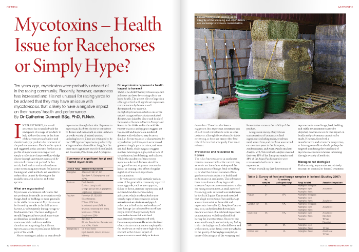 INTERESTINGLY, increased mycotoxins through their skin. Exposure to awareness has coincided with the mycotoxins has been shown to contribute emergence of a range of products to to disease and even death in some instances help address the issue, in the form in a wide variety of animal species, of dietary mycotoxin binders and including horses. There are estimated to be disinfectant-type products for treatment of over 300 types of mycotoxins produced by Do mycotoxins represent a health hazard to horses? There is no doubt that mycotoxin exposure in horses can have devastating effects on horse health. The potent effect of ingestion of forage or feed with significant mycotoxin contamination by horses is well documented. For example, stachybotryotoxicosis, which is one of the earliest recognised mycotoxin-mediated diseases, was linked to illness and death of thousands of horses in Eastern Europe and Russia in the 1930s and in the mid '80s. Fescue toxicosis and ryegrass staggers are two mould and mycotoxin-mediated diseases with which you may be more familiar. Fescue toxicosis is characterised by reproductive problems, such as increased gestation length, poor lactation, and mare and foal death, whilst ryegrass staggers involves neurological signs, such as lack of co-ordination, head shaking, and collapse. Whilst the incidence of these severe mycotoxin-derived diseases should be recognised as rare, of greater concern for horses in training is the effect of regular ingestion of low-level mycotoxin contamination. Mycotoxicosis could certainly explain some of the general ills commonly reported in racing yards, such as poor appetite, failure to thrive, immune suppression, and increased incidence of secondary infections, which are described as non- specific signs of mycotoxicosis in farm animals such as chickens and pigs. A reduction in feed intake and evidence of liver damage (as indicated by raised liver enzyme GGT) has previously been reported in horses fed with feed experimentally contaminated with Fusarium mycotoxins. However, the level of mycotoxin contamination employed in this study was in reality quite high which is relevant as the clinical impact of mycotoxicosis is most likely to be dose the yard environment. Should we be cynical and suggest that this accounts for the rise in profile of mycotoxins in racing, or is it simply a reflection of improved knowledge driven through investment in research by interested commercial parties? In this article, I will seek to outline the relevant issues concerning mycotoxins for horses in training and what methods are available to reduce their impact by drawing on the available research in horses and other species. What are mycotoxins? Mycotoxins are chemical substances that are produced by moulds in association with forage, feed, or bedding, or more generally in the stable environment. Mycotoxins can be formed by moulds in the field prior to harvest, or subsequently during storage or feed manufacture. The level and type of mould/fungus and associated mycotoxins produced are dependent on the environmental conditions and it is therefore not surprising that different mycotoxins are more prevalent in different parts of the world. Horses can ingest, inhale, or even absorb dependent. There has also been a suggestion that mycotoxin contamination of feed could contribute to colic in some instances, although the evidence for this is not strong, as there are many other feed- related factors that are equally if not more relevant. Prevalence and relevance to horses The risk of mycotoxicosis in racehorses remains unanswerable at the current time, as we do not know how widespread the contamination of forage, feed, or bedding is, or what the clinical relevance of low- grade mycotoxin intake is to health and performance in racehorses. This is because there is an absence of any large scale surveys of mycotoxin contamination within the racing environment. A small survey of five racing yards in Ireland was undertaken by the Irish Equine Centre and revealed that a high proportion of hay and haylage was contaminated with moulds and mycotoxin (see table 2). Samples of coarse mix, oats, and pelleted feed revealed a much lower level of mould and mycotoxin contamination, with the pelleted feed having the lowest content. However, this was a small sample and certainly my feeling is that the haylage results should be viewed with caution, as no details were provided as to the quality of the haylage sampled, in terms of the integrity of the wrapping and fermentative status or the stability of the product. A large scale survey of mycotoxin contamination of concentrate feed ingredients including maize, soyabean meal, wheat bran, and rice bran was carried out over two years in the European, Mediterranean, and Asian-Pacific markets. Analysis of 2,753 resultant samples revealed that over 50% of the European samples and 30% of the Asian-Pacific samples were contaminated with one or more mycotoxins. Whilst I would say that the presence of   mycotoxins in some forage, feed, bedding, and stable environments cannot be disputed, conclusions on its true impact on health and performance cannot yet be made. However, from both a manufacturer's and a trainer's perspective, at this stage our efforts should perhaps be targeted at reducing the overall risk of mycotoxin exposure in horses in training through a variety of methods. Management strategies Unfortunately, mycotoxins are relatively resistant to chemical or thermal treatmen  and so once they are formed they are a challenge to remove from feed ingredients, finished feed, or indeed the stable environment. However, there are a number of practices that can help to minimise exposure to mycotoxins. Feed manufacturers Most feed manufacturers are very aware of the potential issue with mycotoxin contamination of feed, and their strategy is driven by a combination of existing legislation and guidelines designed to reduce the risk of mycotoxin contamination, in combination with 'going that extra mile' as part of their due diligence. There are a number of measures that feed manufacturers take to minimise mycotoxin contamination. Pre-harvest strategy – Use of disease- resistant varieties to reduce mycotoxin formation. In addition, certain field management techniques such as crop rotation and irrigation can reduce mycotoxin formation in the field. Processing techniques – Sieving to remove cracked and damaged grains is helpful, as these are more likely to harbour fungal growth. Washing of grains can also reduce the mycotoxin load, as they are primarily found on the outer surface of the grain. Acid-based mould inhibitors are also used extensively to prevent mould and mycotoxin formation. Bacterial deactivation – Some micro- organisms including certain Lactobacillus species have been reported as having potential for detoxifying mycotoxins in animal feed and forage, although no work in this area has been carried out in horses. Mycotoxin binding/sequestering agents – These ingredients have physical properties which allow them to bind mycotoxins within the gut, thus preventing, or at least reducing, their absorption by the horse. There are numerous mycotoxin binding agents available commercially including bentonites (clay), aluminosilicates, zeolites, and glucomannan (yeast) derivatives. The only mycotoxin binder that has been evaluated in horses thus far is derived from yeast (Saccharomyces cerevisiae 1026) cell walls. When this was fed at about 5g per day it was able to improve appetite and reduce signs of liver damage (raised GGT) in horses consuming a ration that was contaminated with a number of Fusarium mycotoxins compared to the non- supplemented control group of horses. Some feed companies are already adding mycotoxin binding agents to their feed, although they can of course be top dressed onto the racing ration. Forage Ingestion and inhalation of mycotoxins in forage is an issue for horses. A link has lready been made between inhaled mycotoxins and the development of equine recurrent airway obstruction (RAO). Routine analysis of forage for mycotoxins is relatively expensive (approximately £125-150/sample) and it is also a bit like looking for the proverbial needle in a haystack, as contamination may not be uniformly distributed. However, a simple total mould and yeast analysis, which is much more economical (approximately £50-60/sample), may give a broad indication of how clean a particular batch of forage is. Soaking hay – Whilst mycotoxins are soluble in water and some will be lost during the soaking process, if hay needs to be soaked, perhaps it is not good enough to be fed to horses in training. Steaming hay – The practice of steaming hay has increased in popularity in racing yards and whilst this should not be used to condone buying lower quality hay, research does indicate that steaming forage helps to limit the exposure of horses in training to moulds. However, as far as I am aware the impact of the steaming process on the presence of mycotoxins in forage has not been evaluated. Stable cleanliness Residues of feed in buckets, mangers, barrows, and feed bins are an open invitation for mould and associated mycotoxin growth and so should be avoided. The general standard of cleanliness in the feed room should also be consistently high. Dispensing feed directly from bags, rather than into bins or barrows, is preferable, but where feed components need to be mixed, ensure everything used is washed thoroughly on a regular basis. In addition, feed mangers in stables should ideally be totally removable, again to allow thorough cleaning. Hay and forage needs to be stored carefully to reduce the likelihood of mould growth and a well-ventilated building that is dry and clean is essential for this purpose. In summary, mycotoxin contamination of feed, forage, and bedding is probably a reality for horses in training, and the potential deleterious effects of mycotoxins on appetite, immune function, and overall health and well-being may limit exercise performance. Much more research is needed to assess the current level of exposure to mycotoxins and the associated clinical impact. In the absence of equivocal data, it is sensible to take active steps to reduce the exposure to moulds and mycotoxins and certainly where poor performance, loss of appetite, failure to thrive, or other widespread health effects are experienced within a yard, it is worthwhile to eliminate mycotoxin exposure as a potential cause.