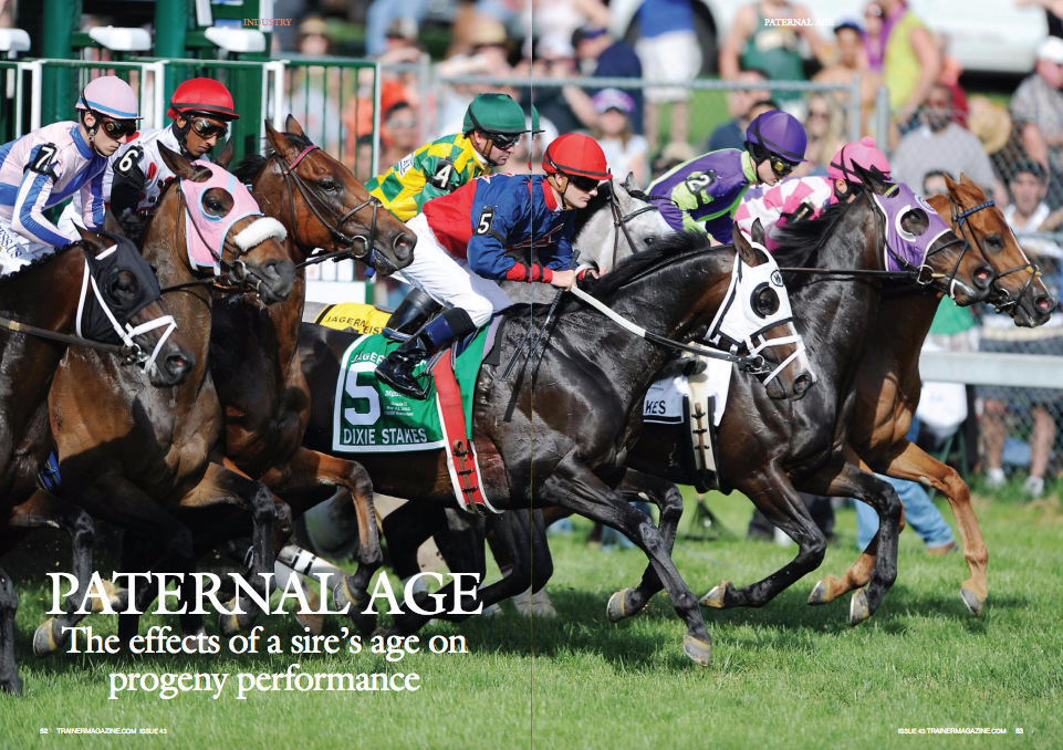 ATernAL age has been found to have a variety of adverse effects on offspring characteristics, including the prevalence of mental disorders and decreased intelligence, in multiple other species such as humans and mice. The probable cause is the large increase in the rate of genetic mutations that occur in the sperm cells of older males. What is the situation in the Thoroughbred horse? This study sought to determine if the proportion of successful progeny produced changed as the stallions increased in age. The study analyzed the racing performances of 26,650 progeny produced by 20 stallions over a 25-year period from 1985-2010. In order to be eligible for the study, the stallions had to be retired from stud duties so that all progeny performance could be analyzed. The stallions had to have had an active breeding career of over 15 years in order to be considered of advanced age. The last crop of foals had to be produced at least five years prior to the study to allow all progeny to have raced from the ages of 2-5 years. As a sizeable number of foals were needed for each stallion in order to make the study a viable one, it was necessary to use popular stallions. Success in flat racing is greatly measured in black-type and by the number of Group and Listed race winners a stallion produces. It was therefore important to use premier stallions that had been proven to produce successful progeny and also to help prevent poor quality mares having an influence on the results, as a higher stud fee is associated with a higher quality mare. In order to differentiate between stallions of different quality, the stallions were divided into three stud fee categories based on what the peak stud fee was: 30,000-85,000, 85,000-125,000, and 125,000-plus. The progeny performance data was also examined in four separate groups depending on the age of the stallion at the time of conception: 4-9 years, 10-15 years, 16-21 years, and 22-27 years. Foal crop size Overall, mean foal crop size produ