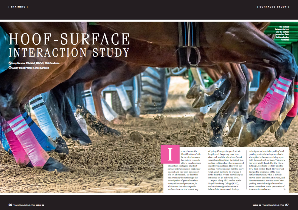 In racehorses, the identification of risk factors for lameness has driven research efforts into lameness prevention strategies. The foot-surface interaction is of particular interest and has been the subject of a lot of research. To date this has primarily been through the investigation of ground-surface composition and properties, in addition to the effects specific surfaces have on the horse's way of going. Changes in speed, stride length, and frequency have been observed, and the vibrations (shock waves) resulting from the initial foot-surface collision have been measured on different surfaces. However, the surface represents only half the story: what about the foot? In practice it is the foot that we are more likely to influence on an individual level.     As part of my PhD studies at the Royal Veterinary College (RVC), we have investigated whether it is beneficial to use novel farriery techniques such as 'sole-packing' and padding materials to improve shock absorption in horses exercising upon both firm and soft surfaces. This work has been kindly funded by the Horse Betting Levy Board (HBLB) and the RVC Paul Mellon Trust. Here we will discuss the intricacies of the foot-surface interaction, what is already known about the effect of surface, and how our research into the use of sole-packing materials might be another arrow to our bow in the prevention of lameness in racehorses.     What is the foot-surface interaction?     The contact between the foot and the surface is over in a flash in the galloping racehorse (or even one trotting slowly, for that matter). However, foot contact may be broken up into four key stages to help us understand and describe the effects different surfaces and farriery techniques have.     Stage 1 – Primary impact. The foot has just hit the ground, is sliding forwards along the surface and decelerating. Vibrations are at their largest and fastest at this stage but the force the leg experiences is low because it is not yet supporting t